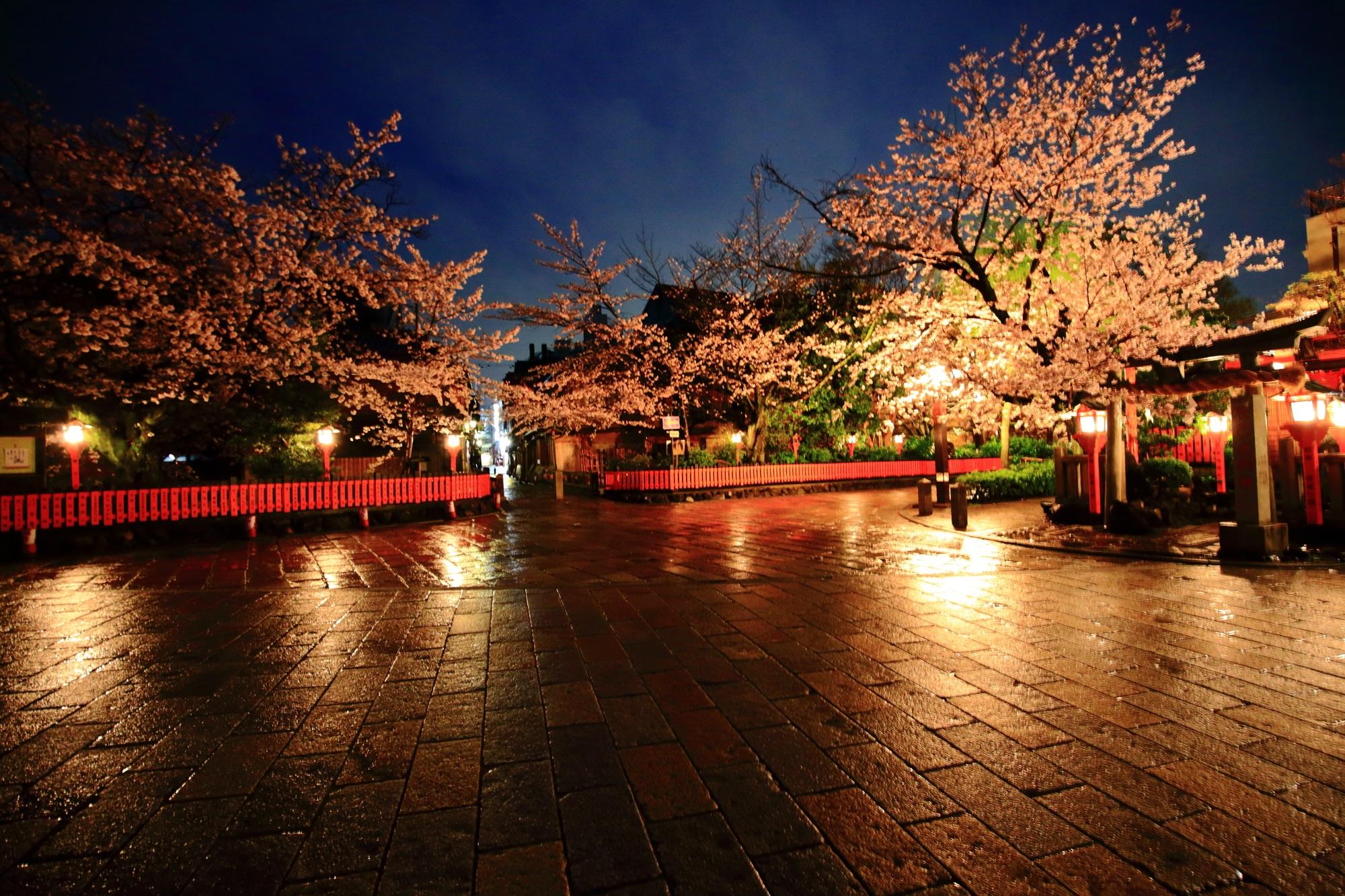 桜と雨と石畳