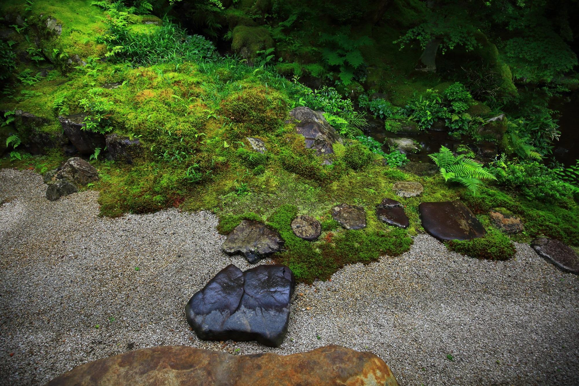 瑠璃光院の風情ある見事な臥龍の庭