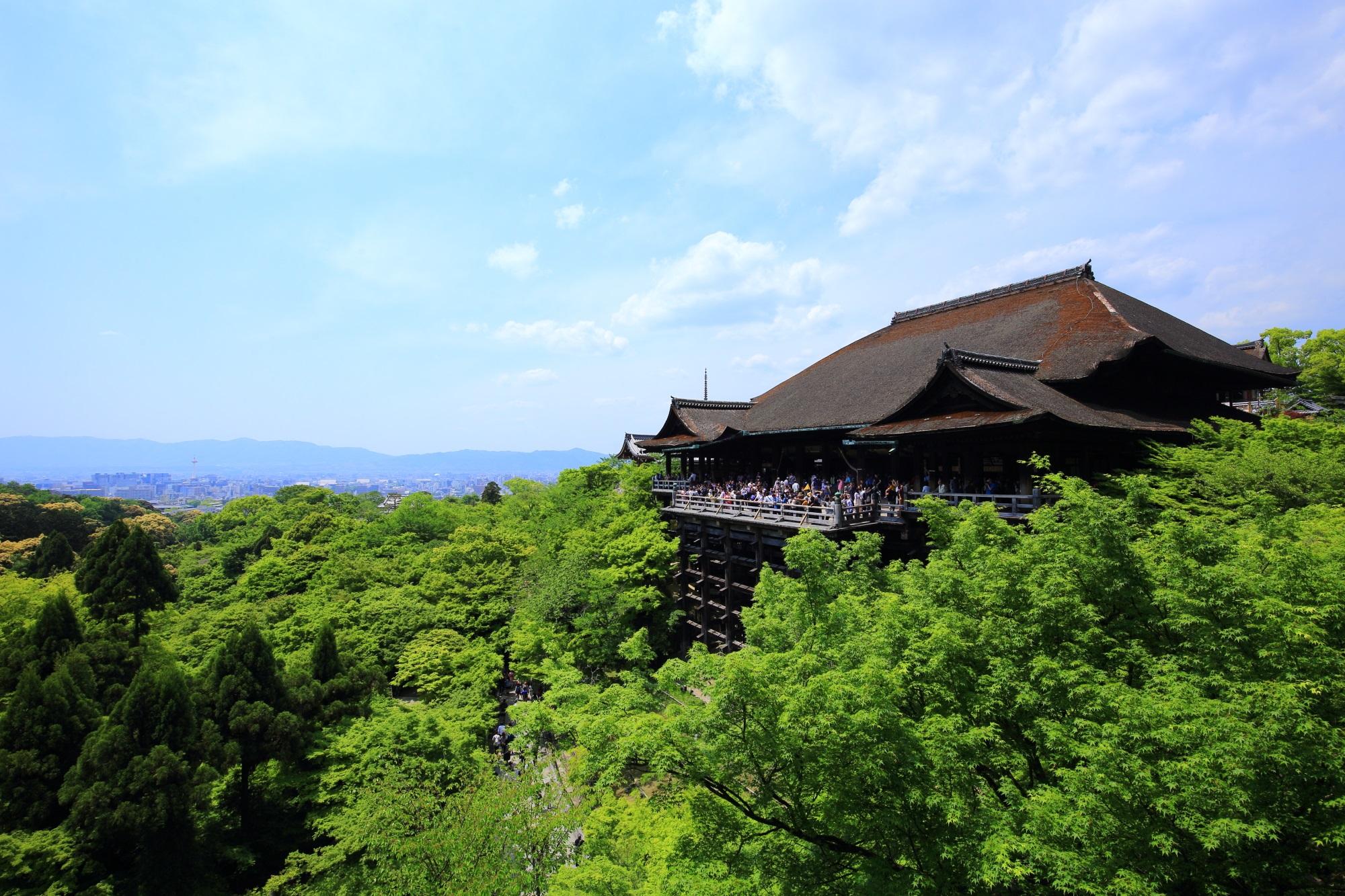 高画質 清水寺 写真 新緑 清水の舞台