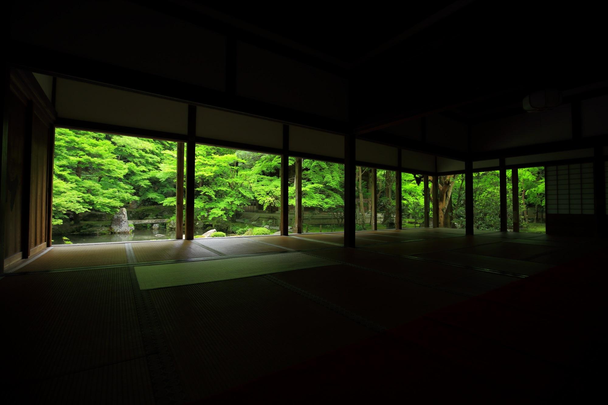 蓮華寺の書院から眺めた素晴らしい新緑の庭園