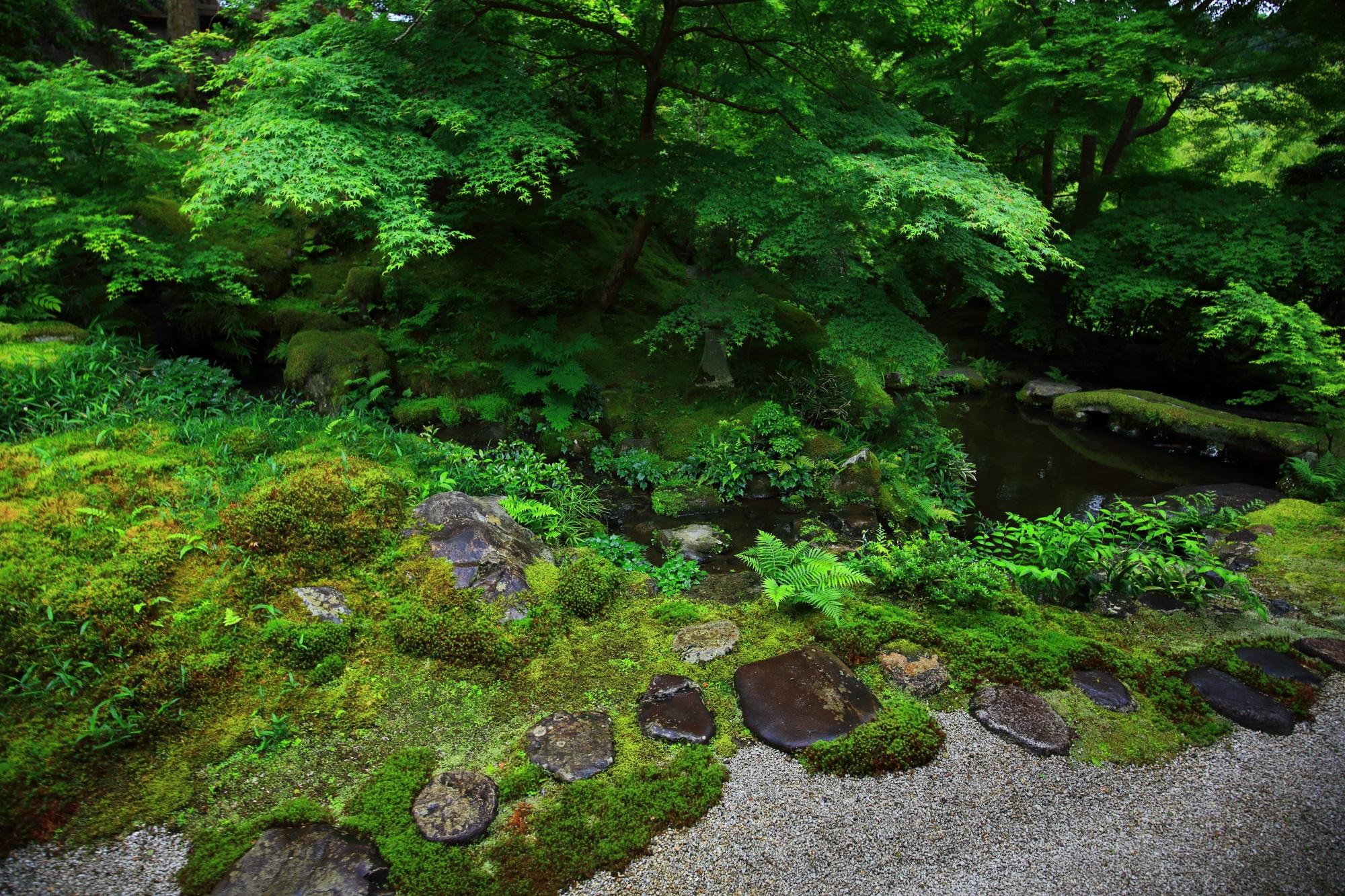 八瀬瑠璃光院(るりこういん)の美しい緑の臥龍の庭