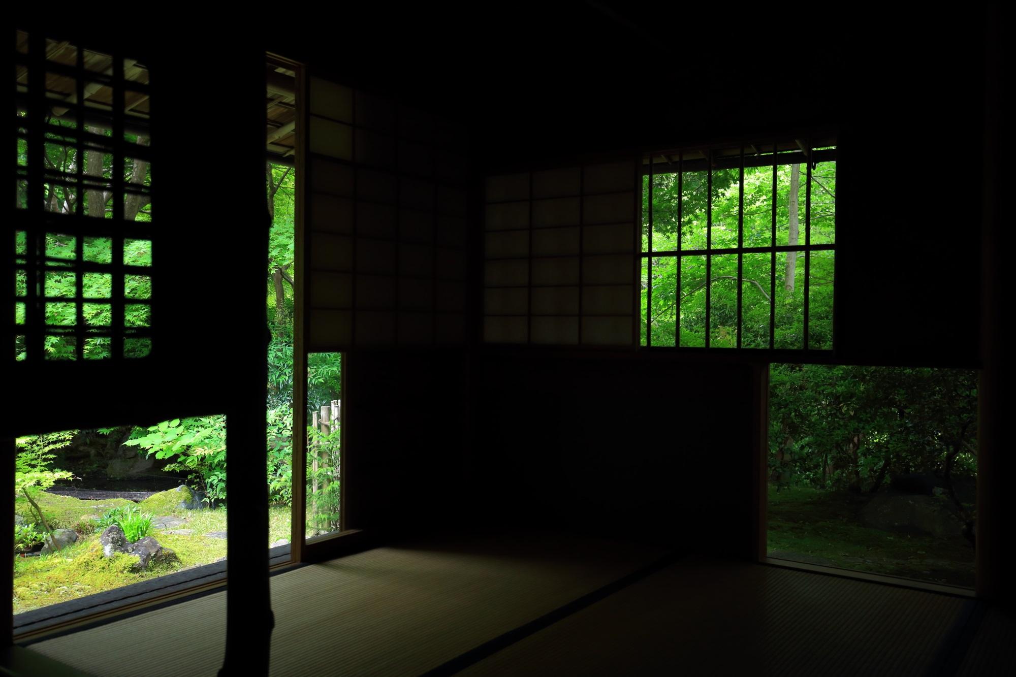 瑠璃光院(るりこういん)の緑につつまれた風情ある茶室