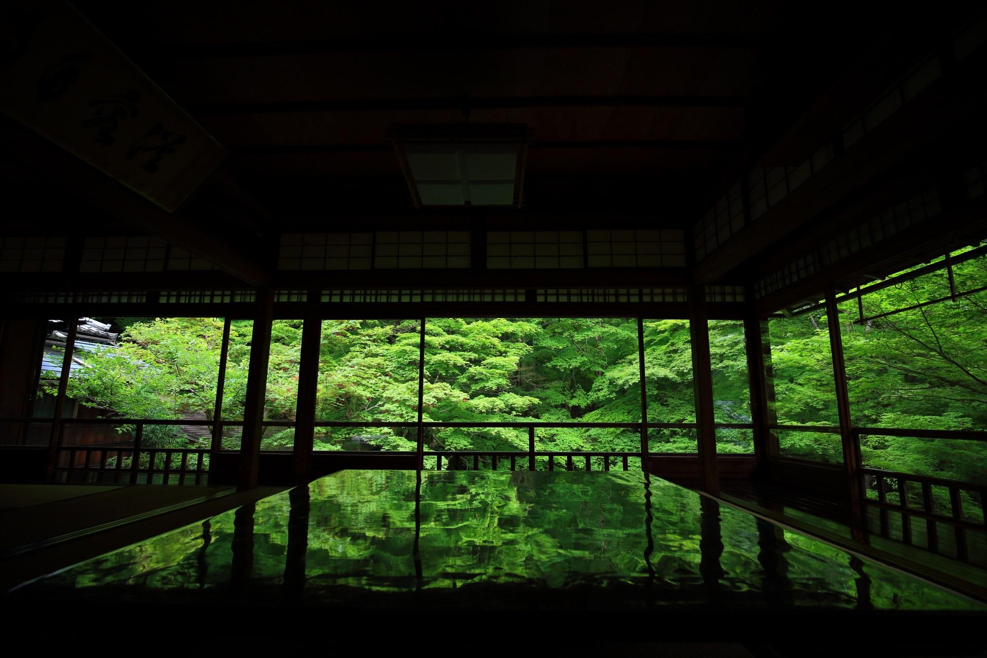 瑠璃光院の書院二階から眺めた見事な新緑と青もみじ
