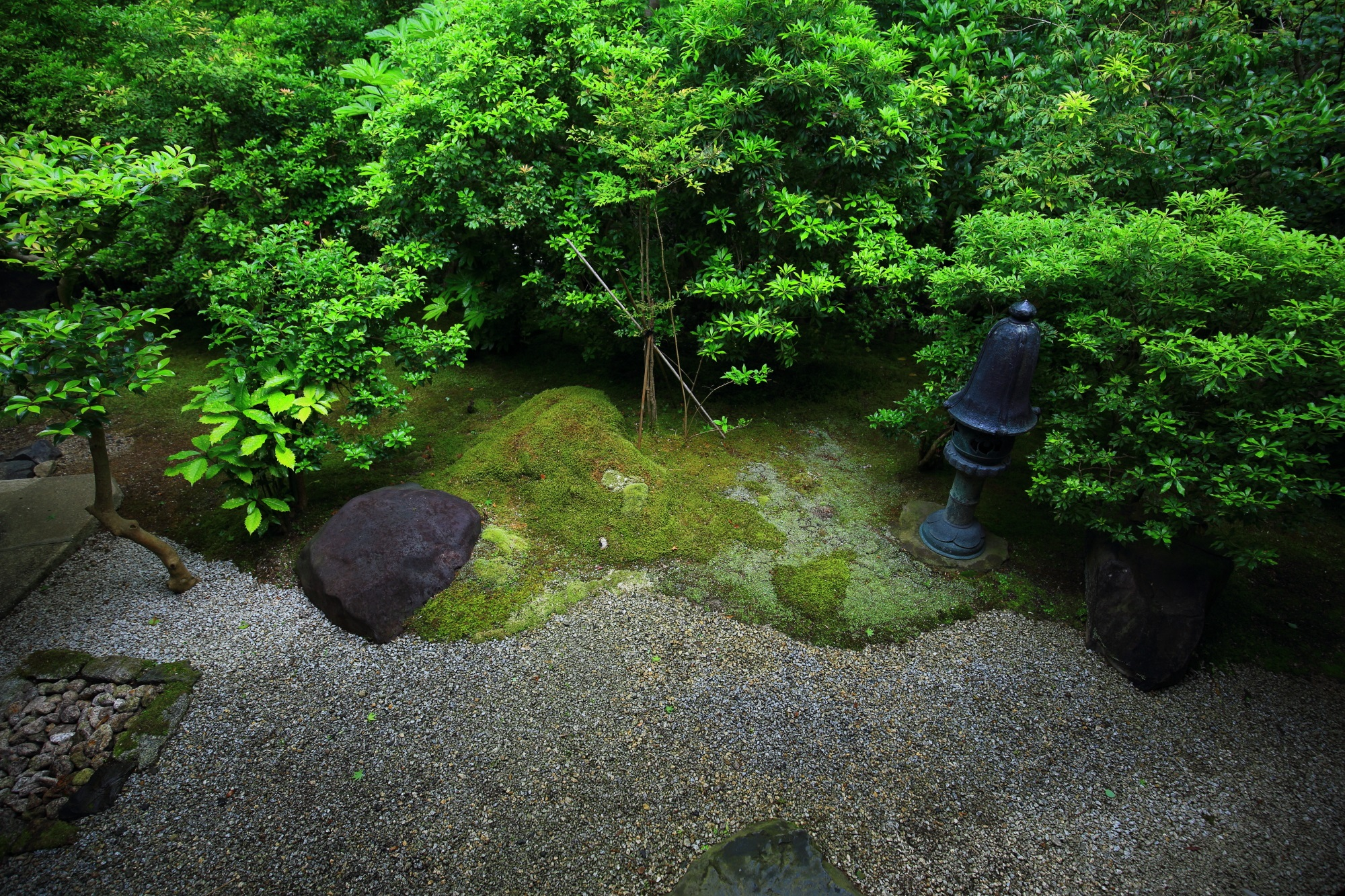 瑠璃光院の茶庵 喜鶴亭前の風情ある庭園
