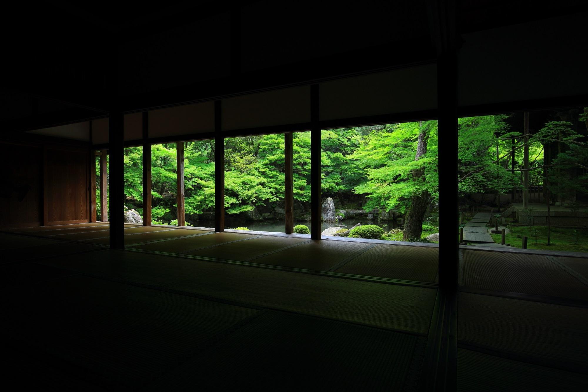 蓮華寺(れんげじ)の書院から眺めた新緑の庭園