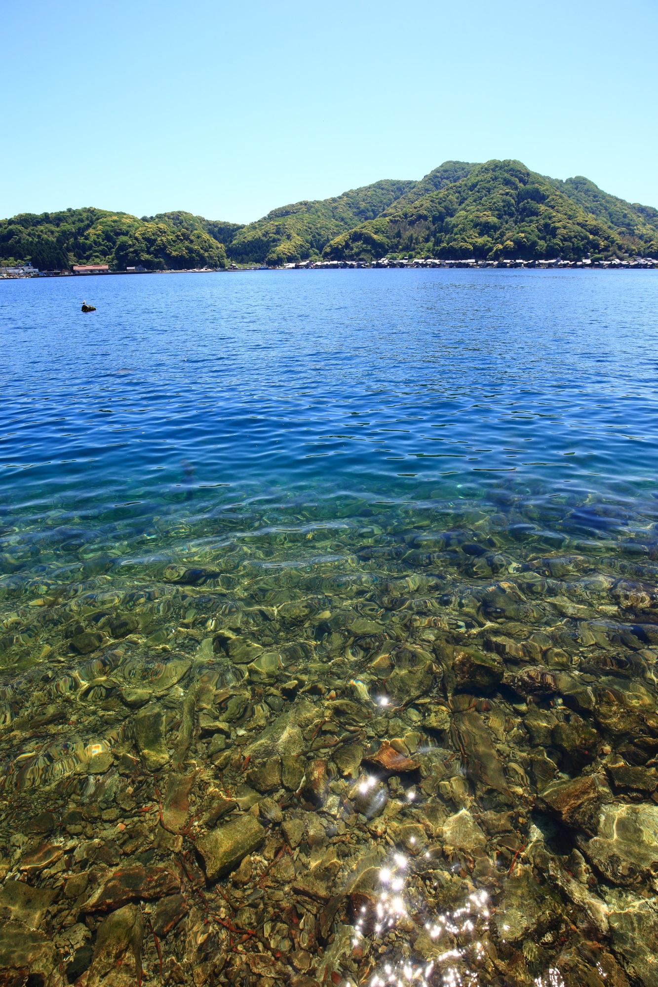 人がたくさん生活しているのに透き通るような綺麗な海の伊根湾