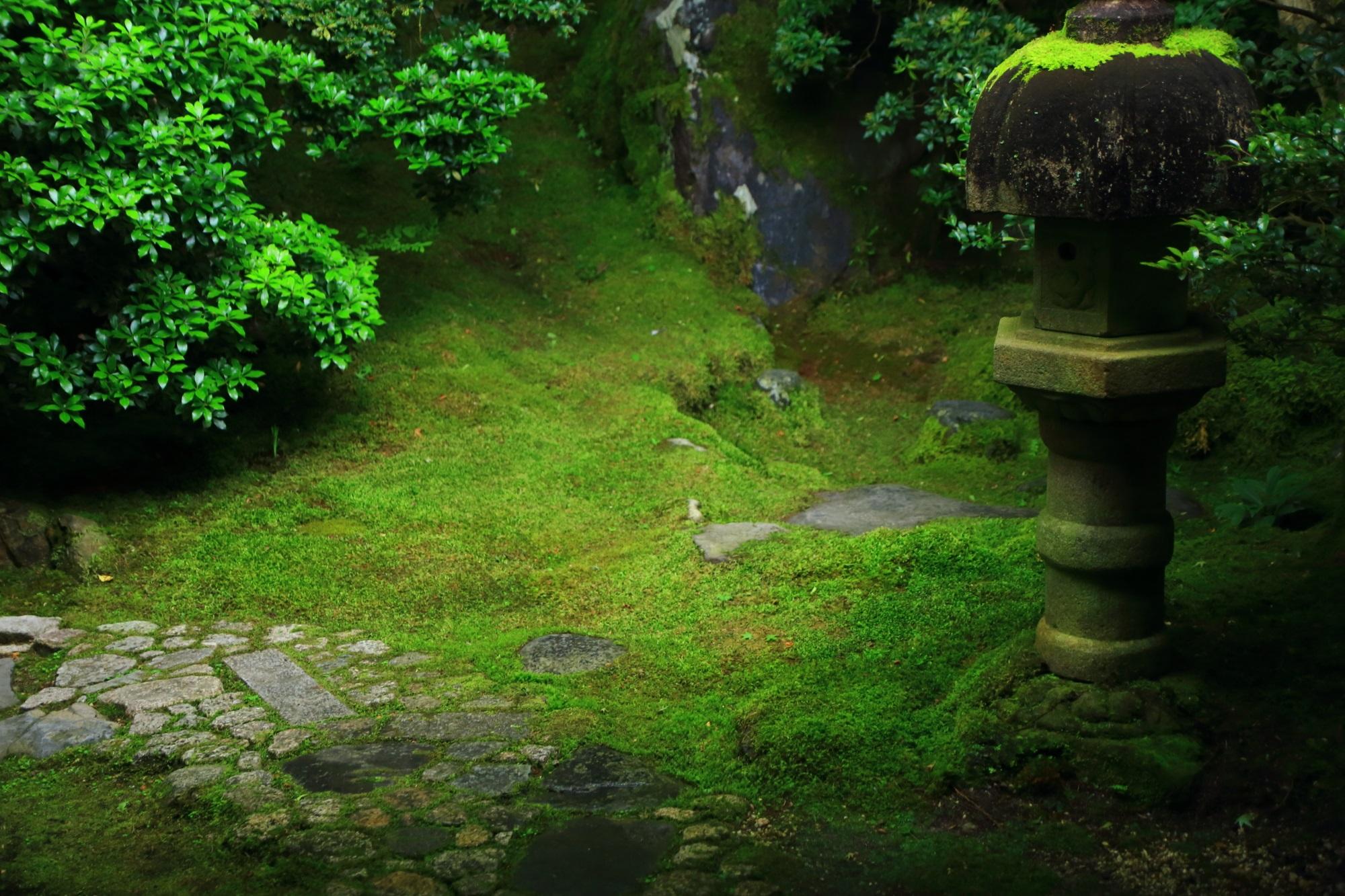 苔 燈籠 瑠璃光院 緑 綺麗