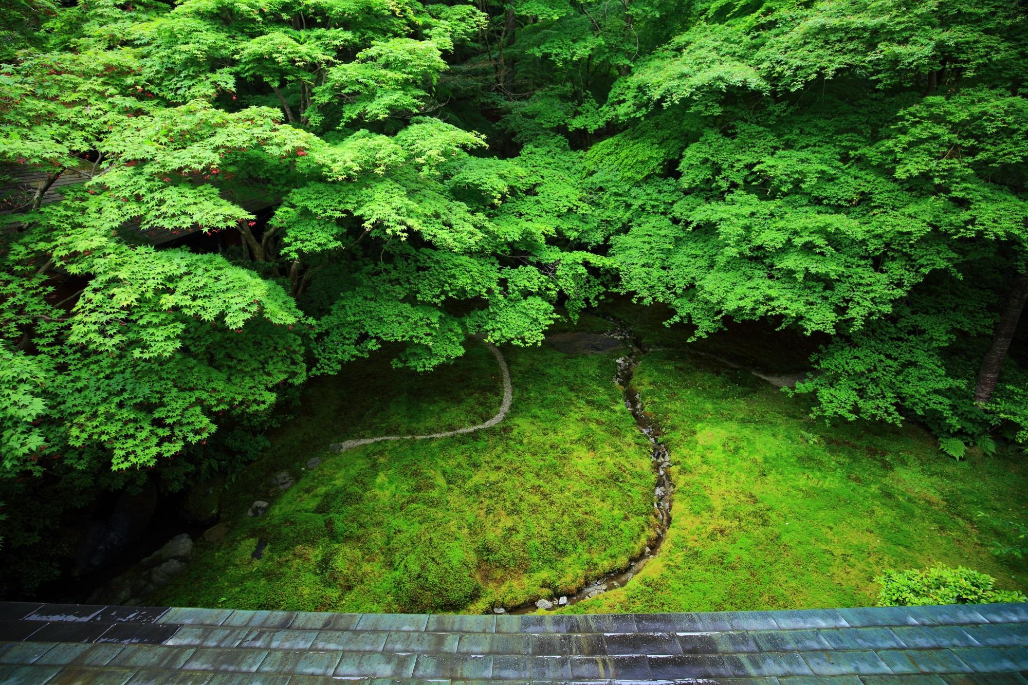 京都の秘境の瑠璃光院の瑠璃の庭の絶景