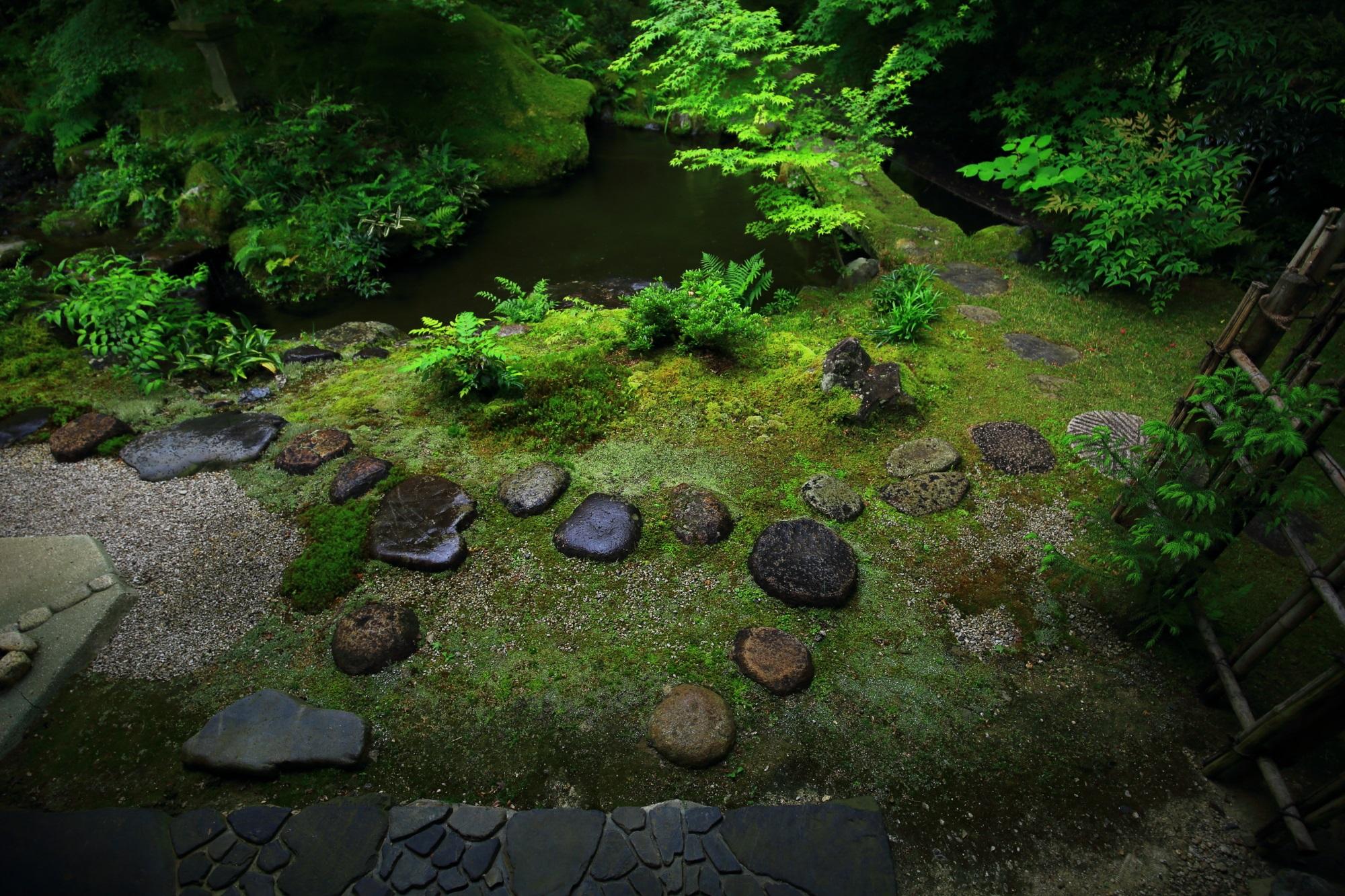 瑠璃光院の茶室前の臥龍の庭