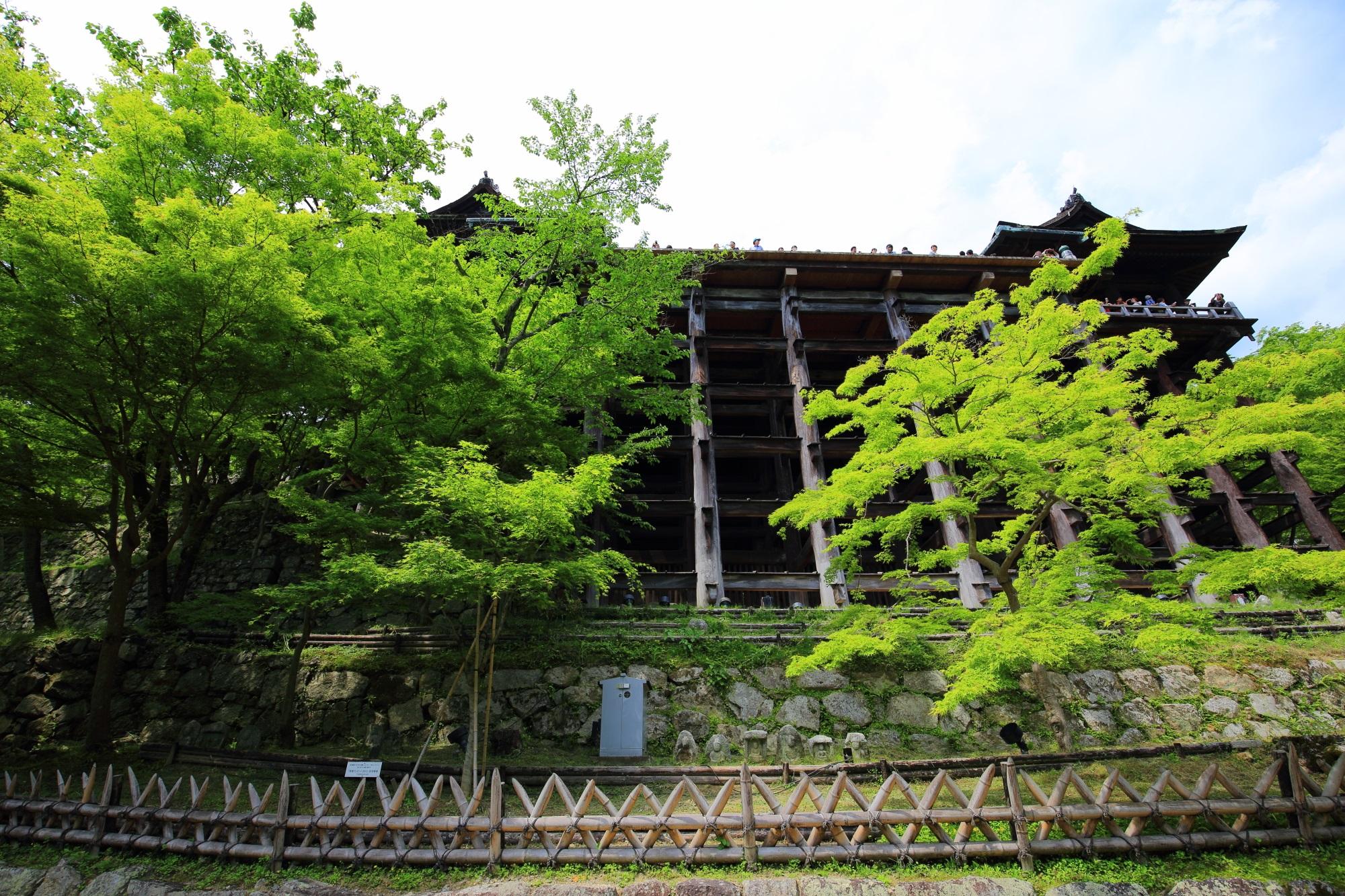 清水寺の下から見上げる本堂と新緑