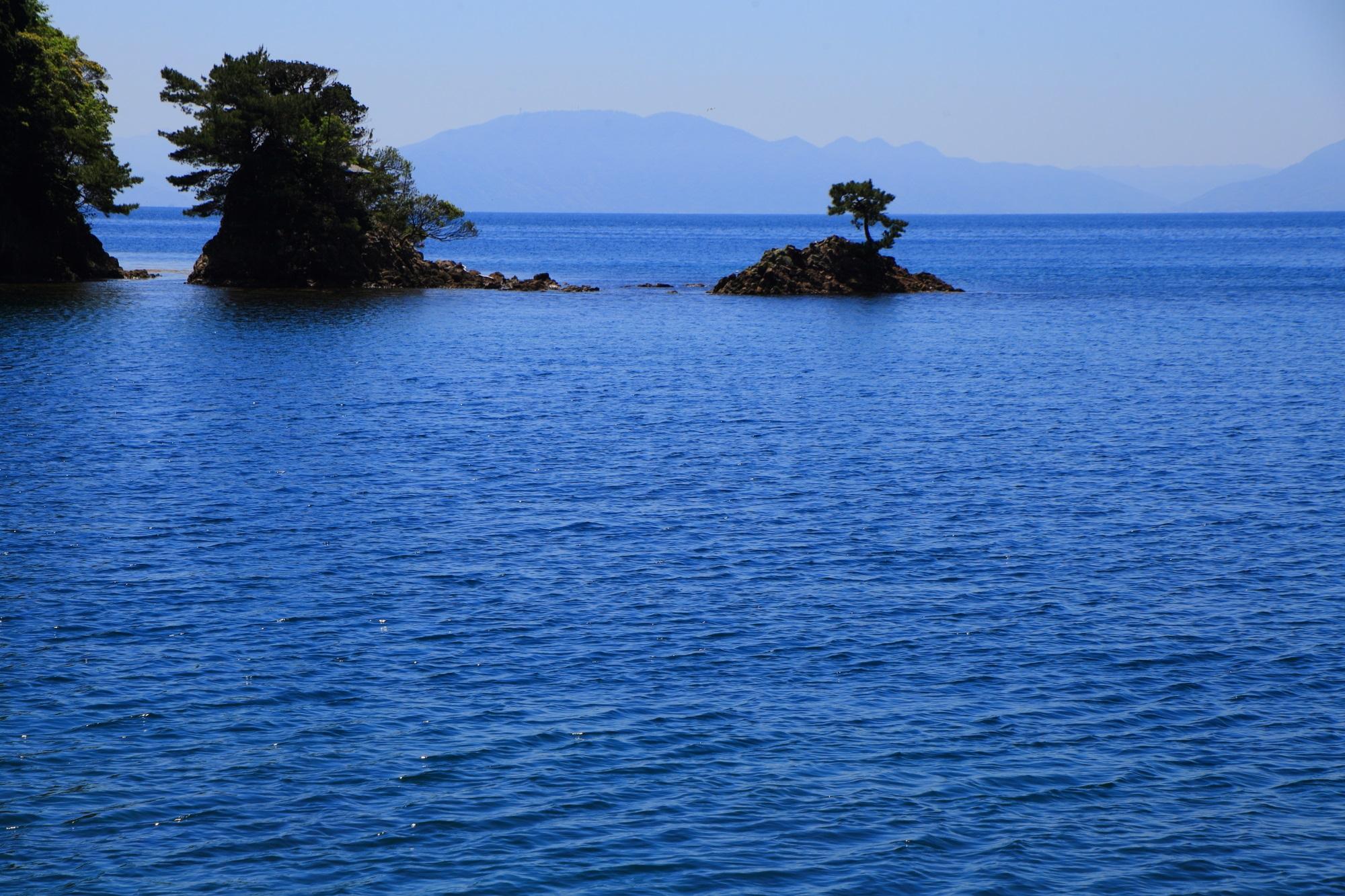 小さな島や岩場にも木が育つ物凄い生命力の伊根湾