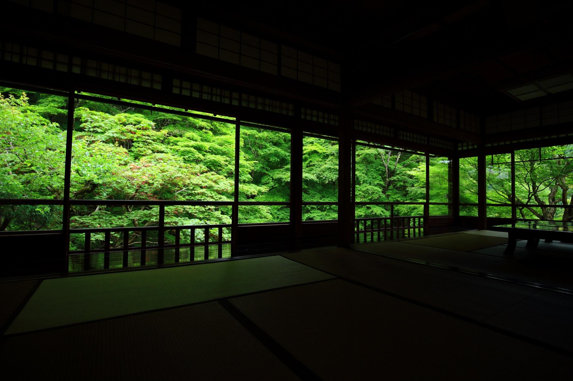 瑠璃光院の書院二階から眺めた瑠璃の庭