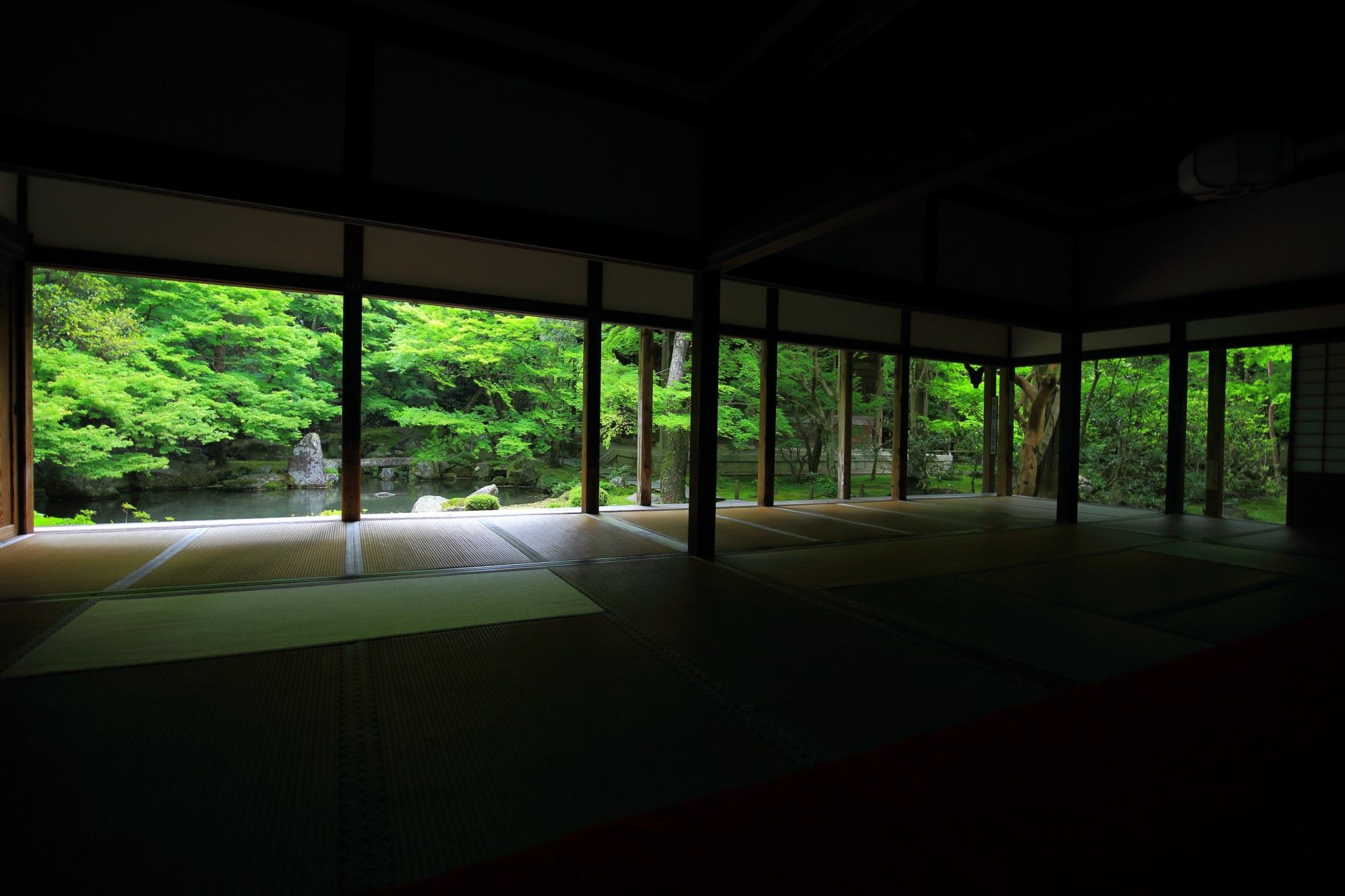 蓮華寺 写真 高画質 新緑
