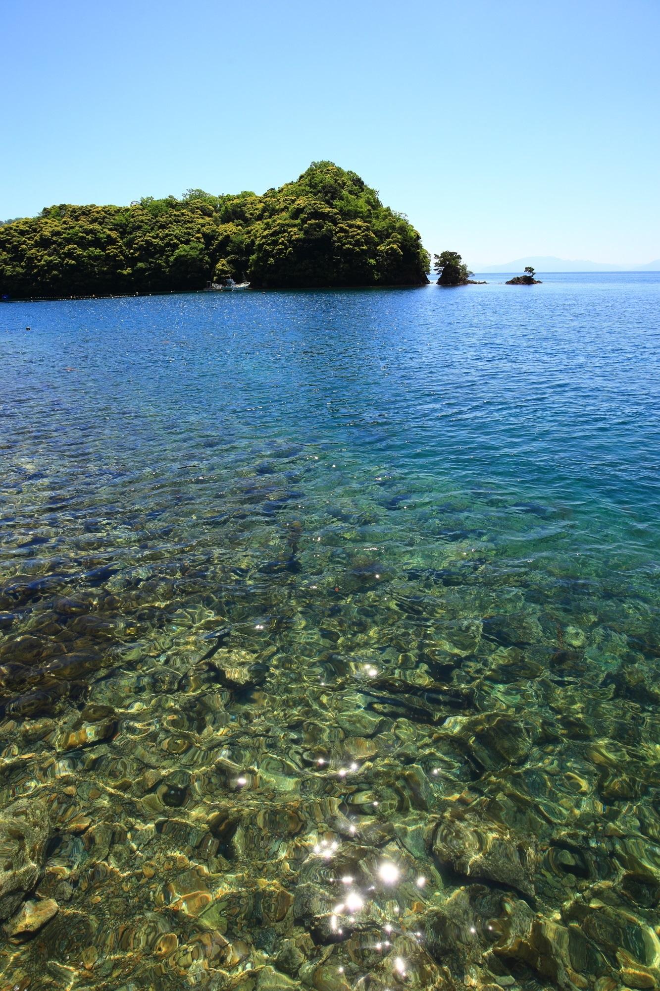 太陽を浴びて輝く伊根湾の揺らめく海面