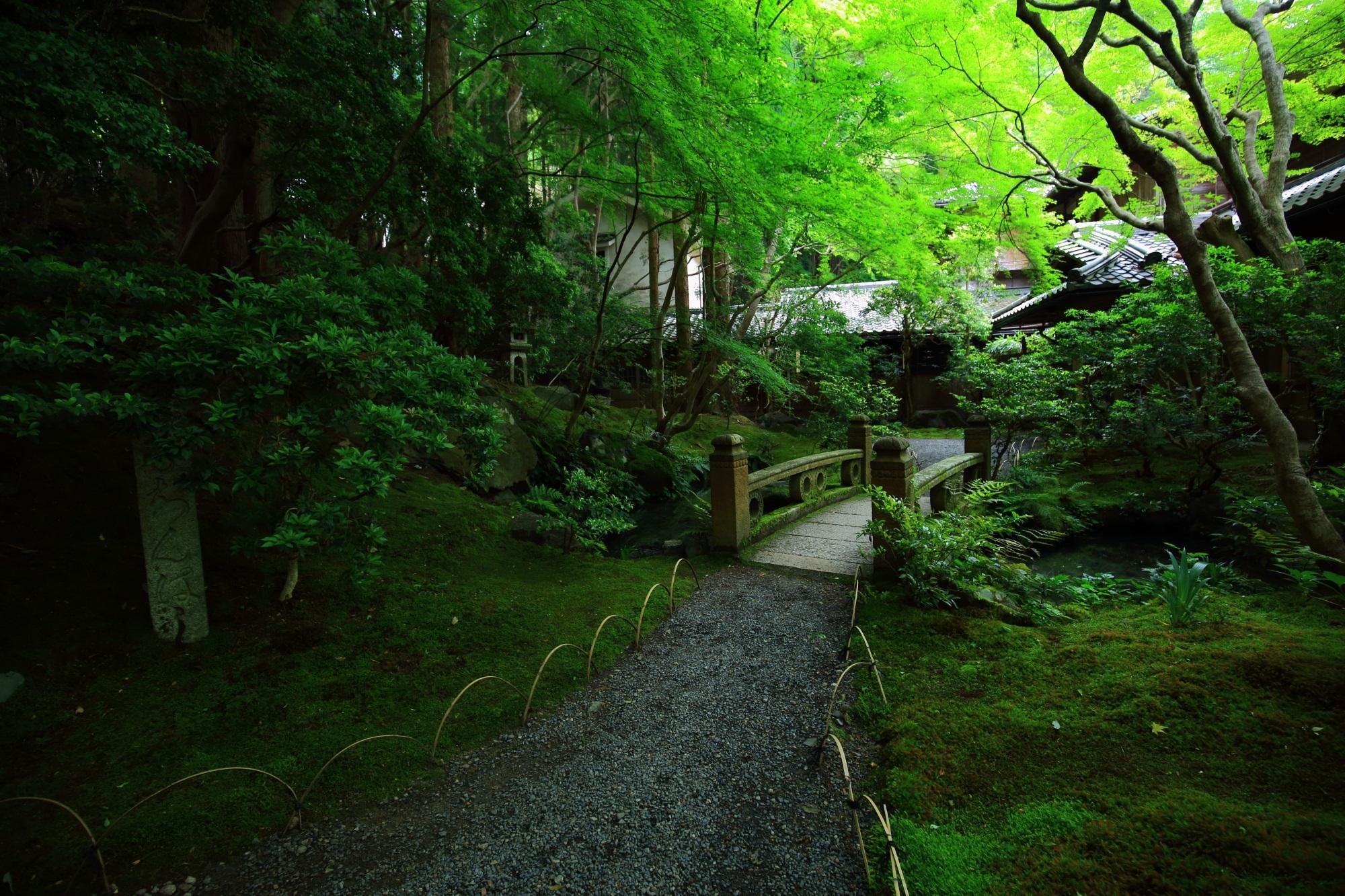 瑠璃光院の鮮やかな緑につつまれた玄関前