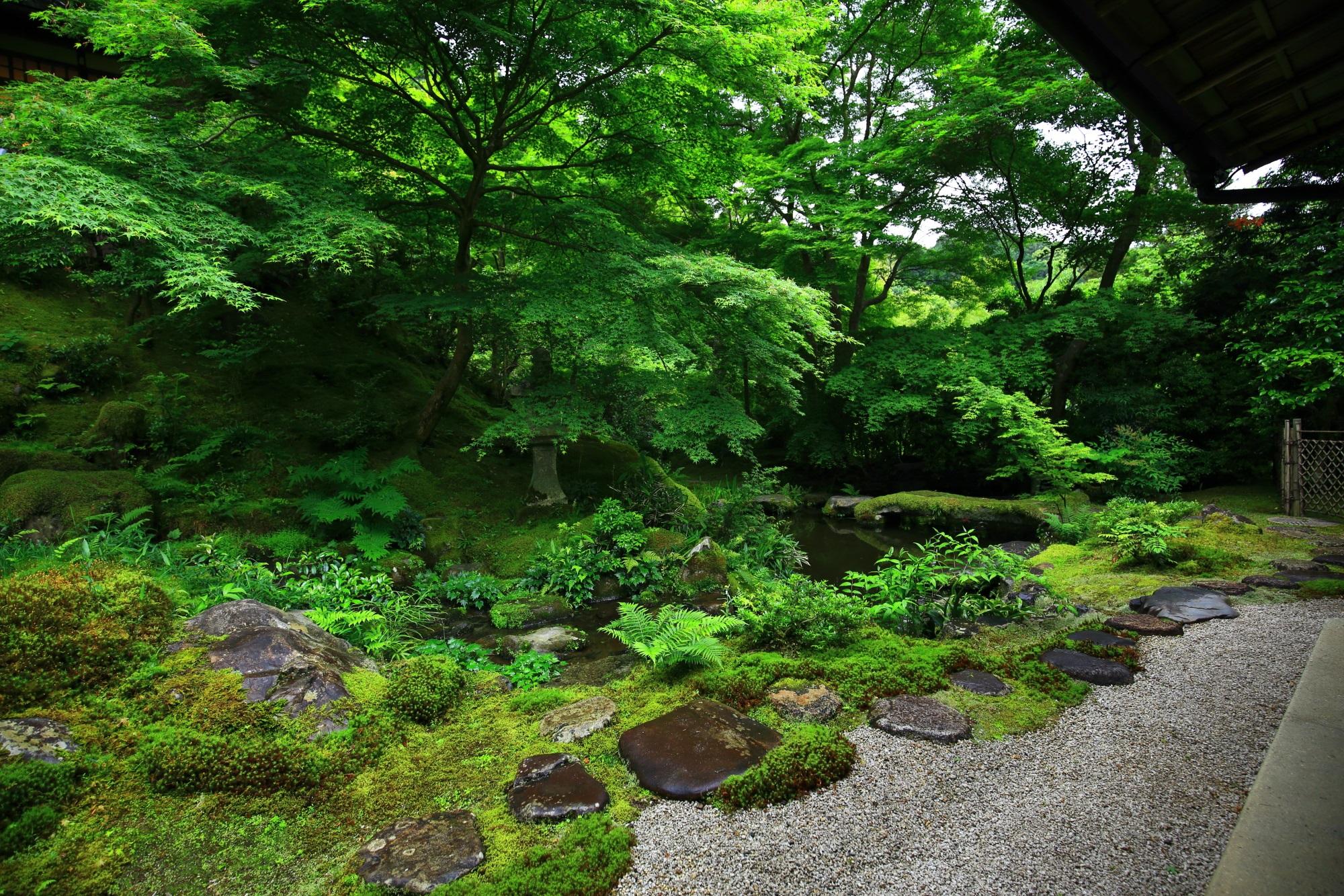 高画質 瑠璃光院 臥龍の庭 写真