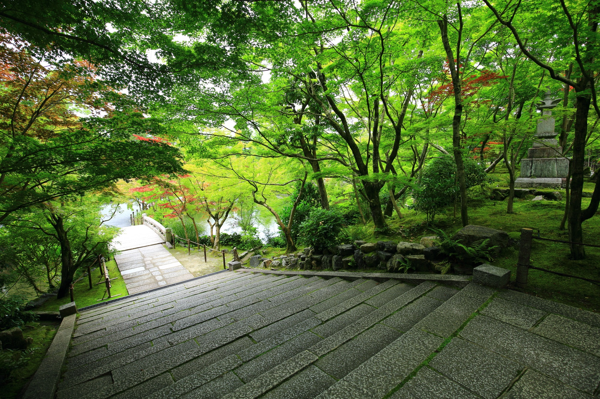 blue maple and fresh green Eikando-Temple in Kyoto Japan