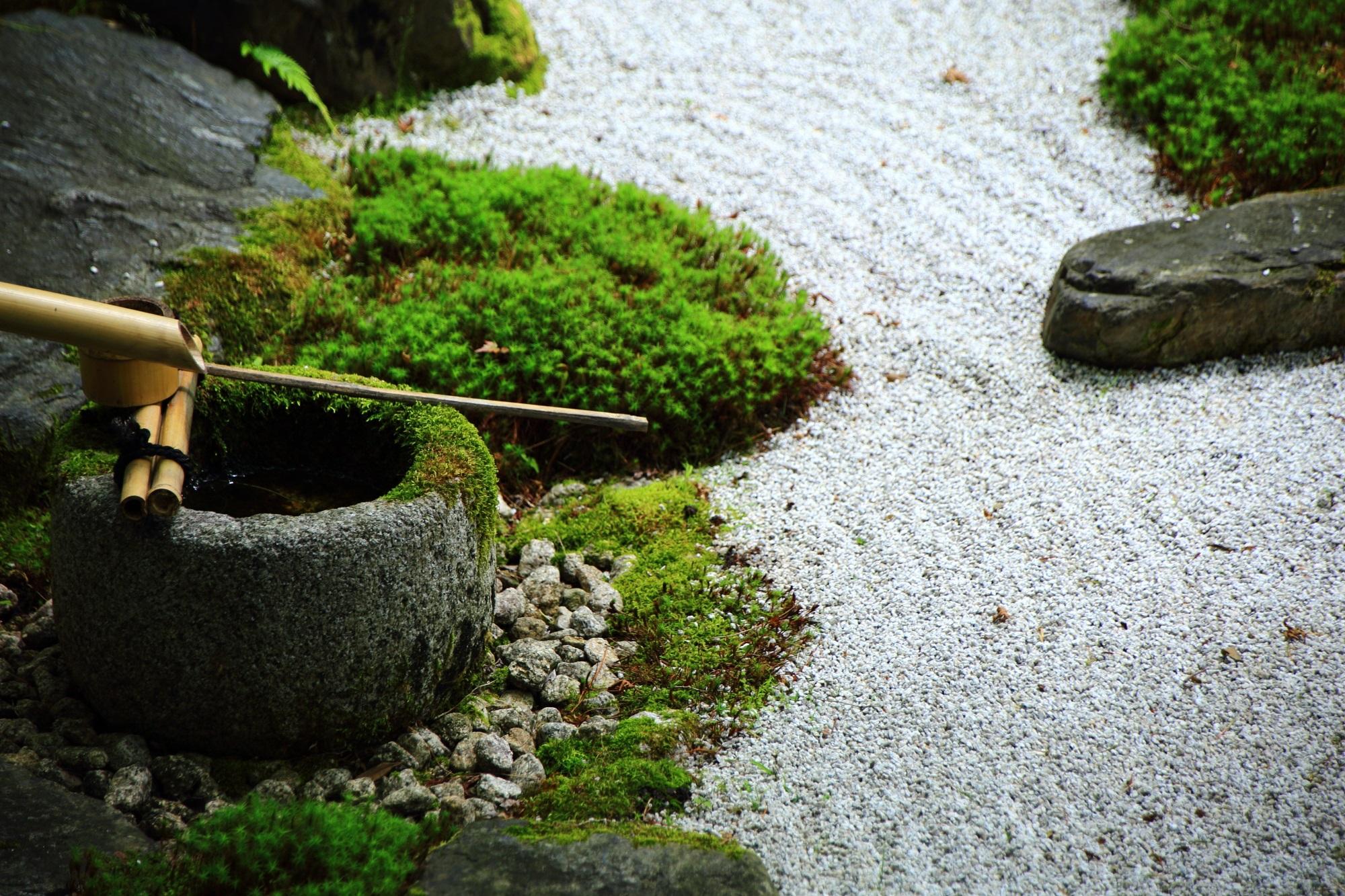 手水鉢 方丈庭園 風情