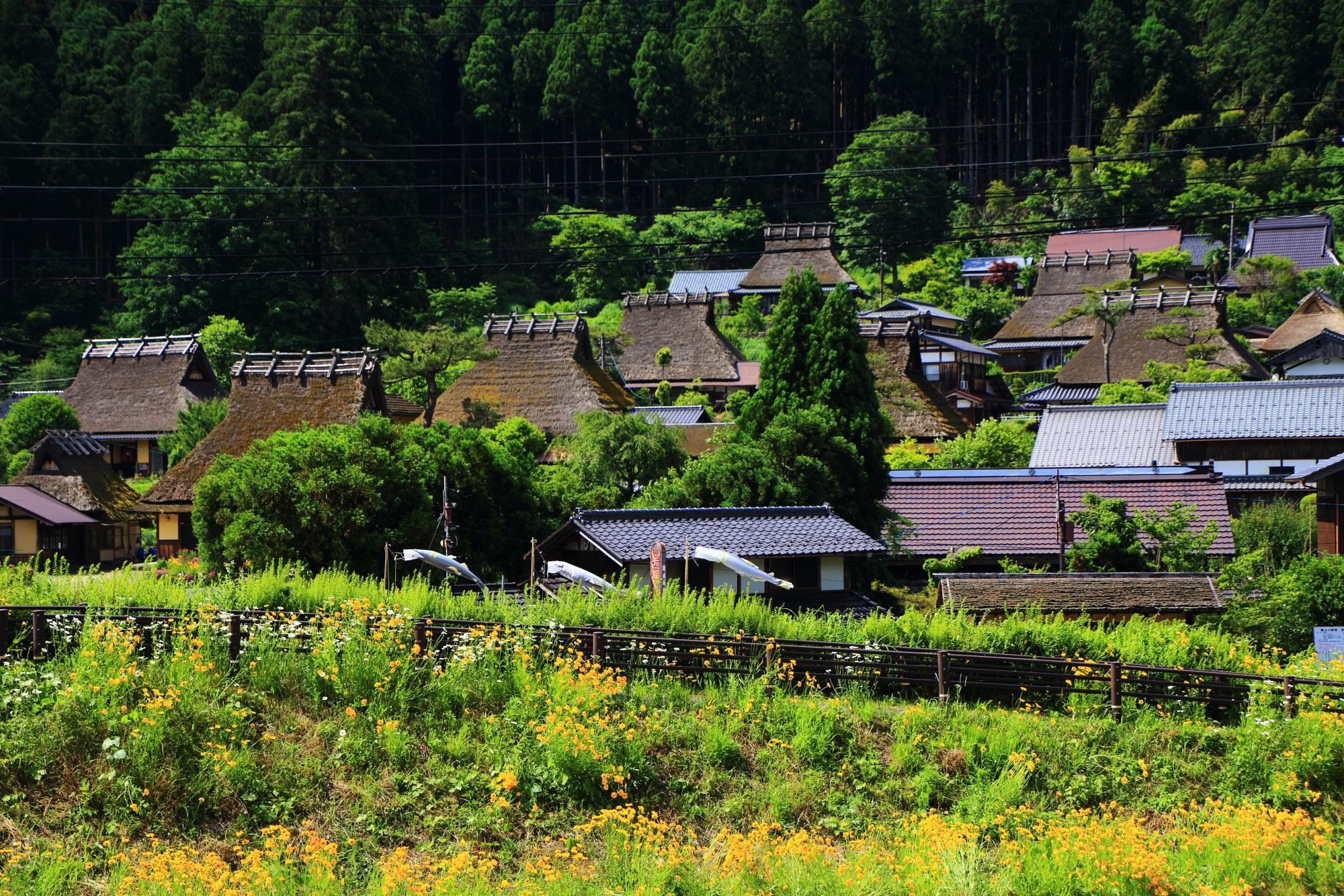 由良川から眺めた花や自然がいっぱいのかやぶきの里
