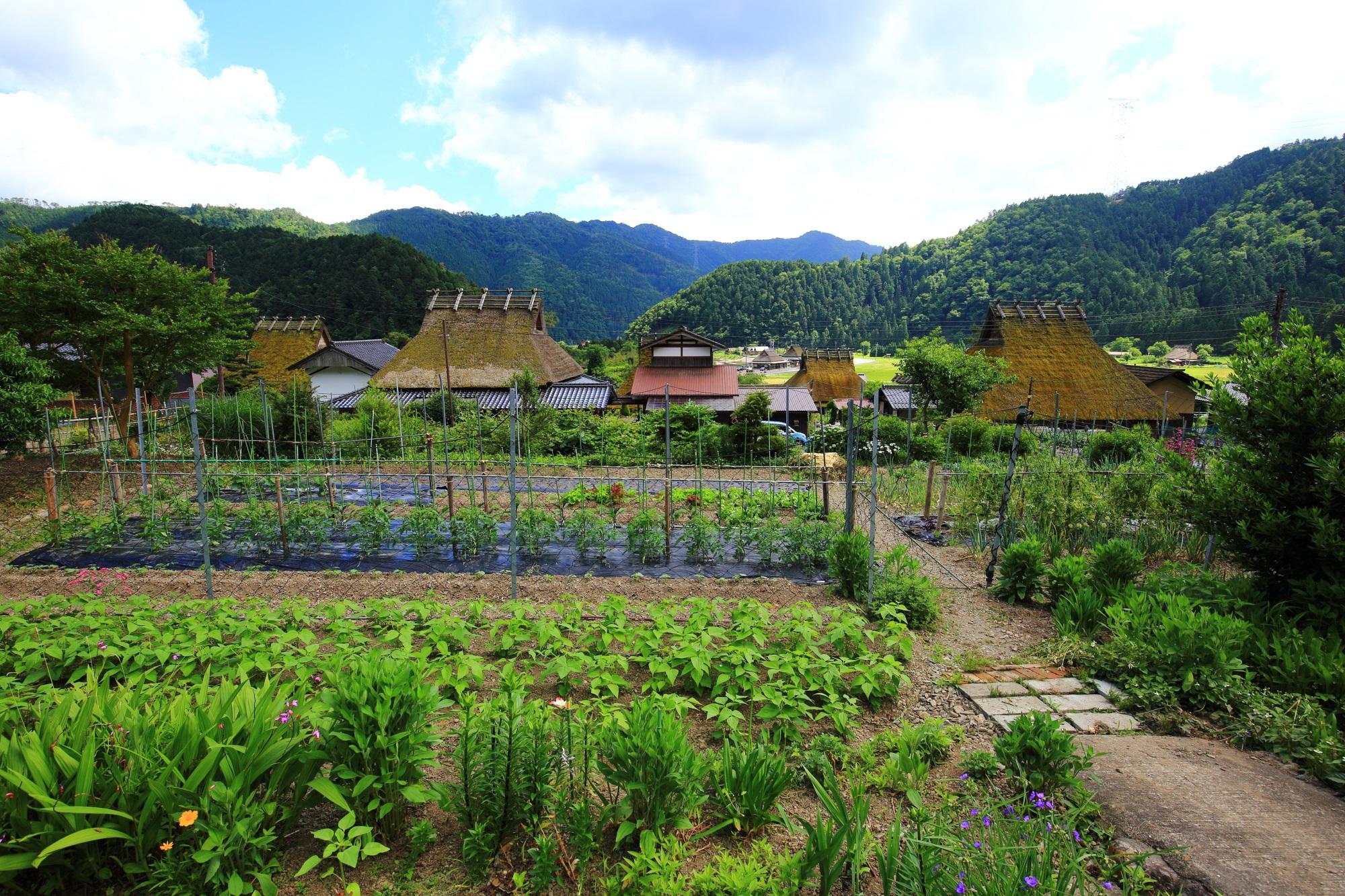 山に囲まれた緑がたくさんの長閑な村