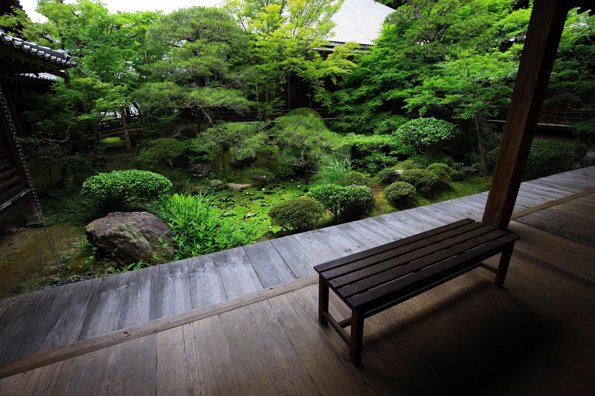 深い緑につつまれた見事な方丈庭園