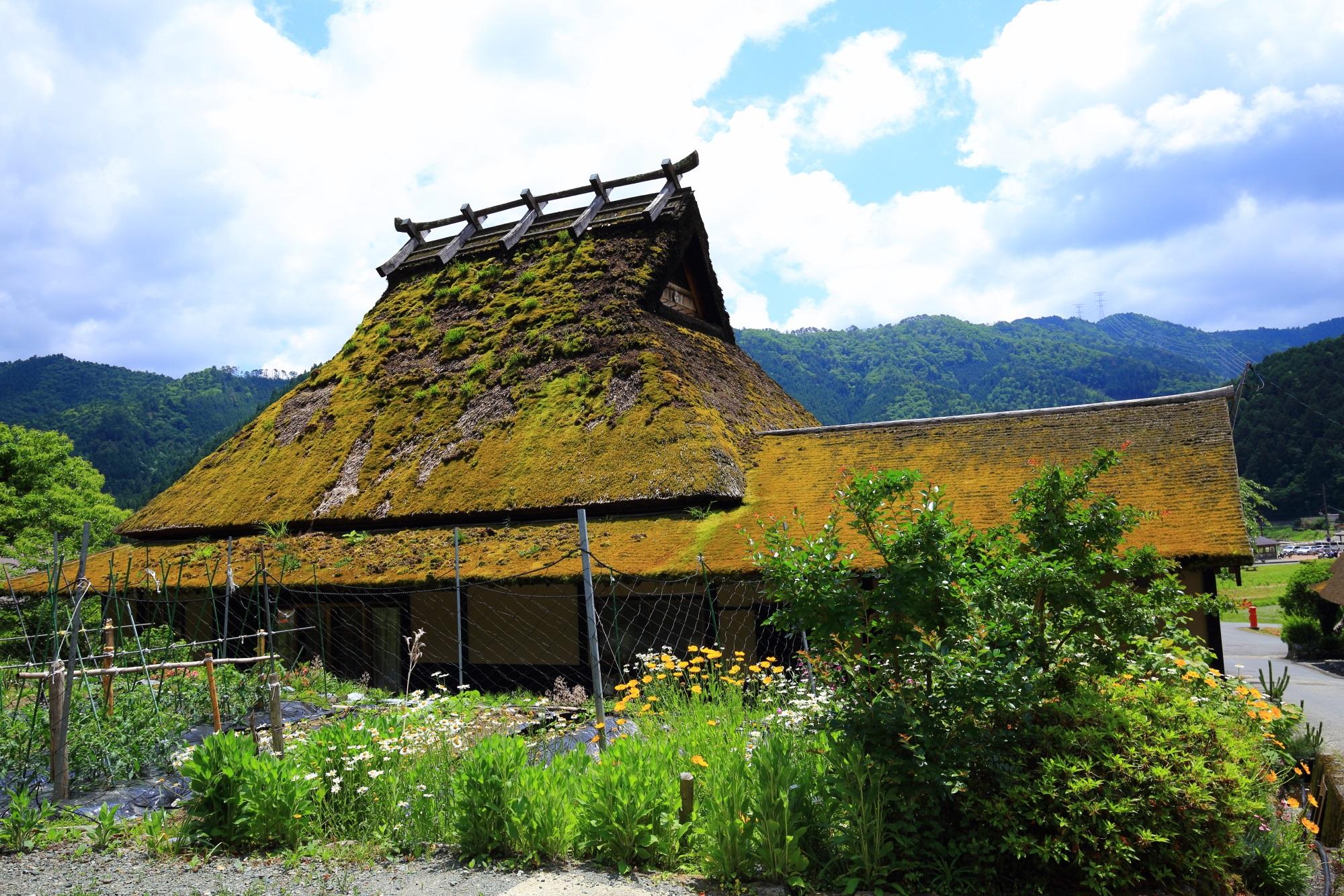 形や大きさは様々な茅葺屋根