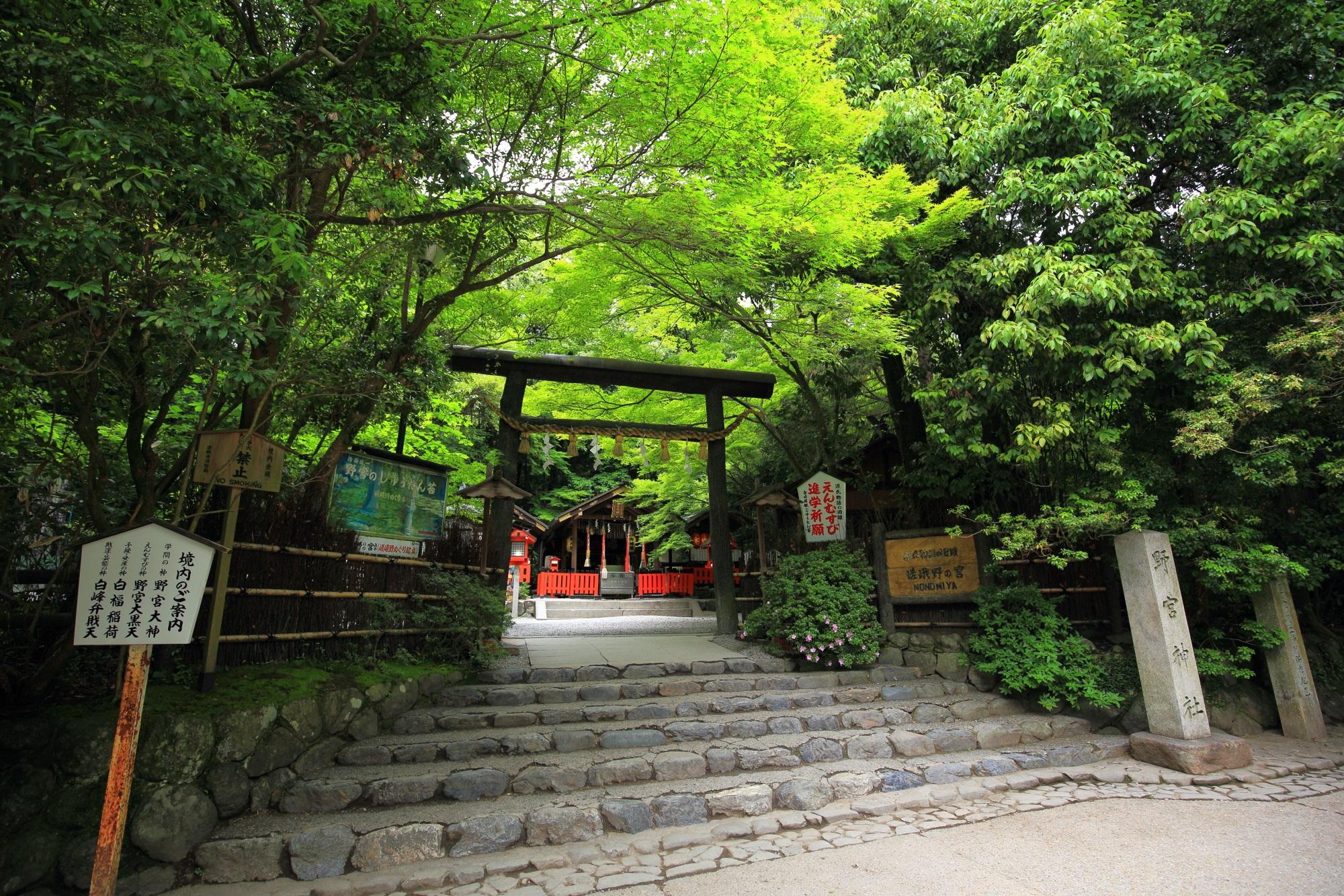 縁結びで有名な野宮神社(ののみやじんじゃ)