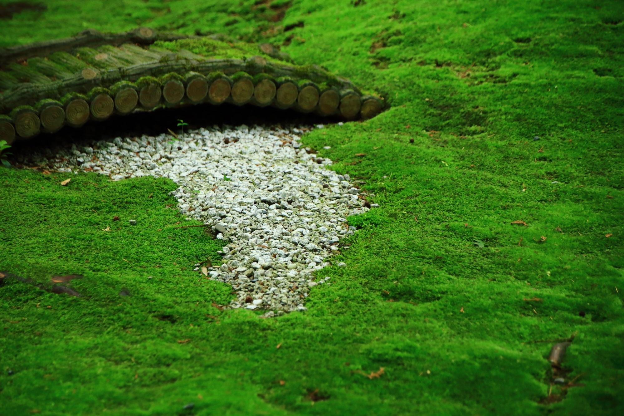 嵯峨野の野宮神社(ののみやじんじゃ)の苔と白砂