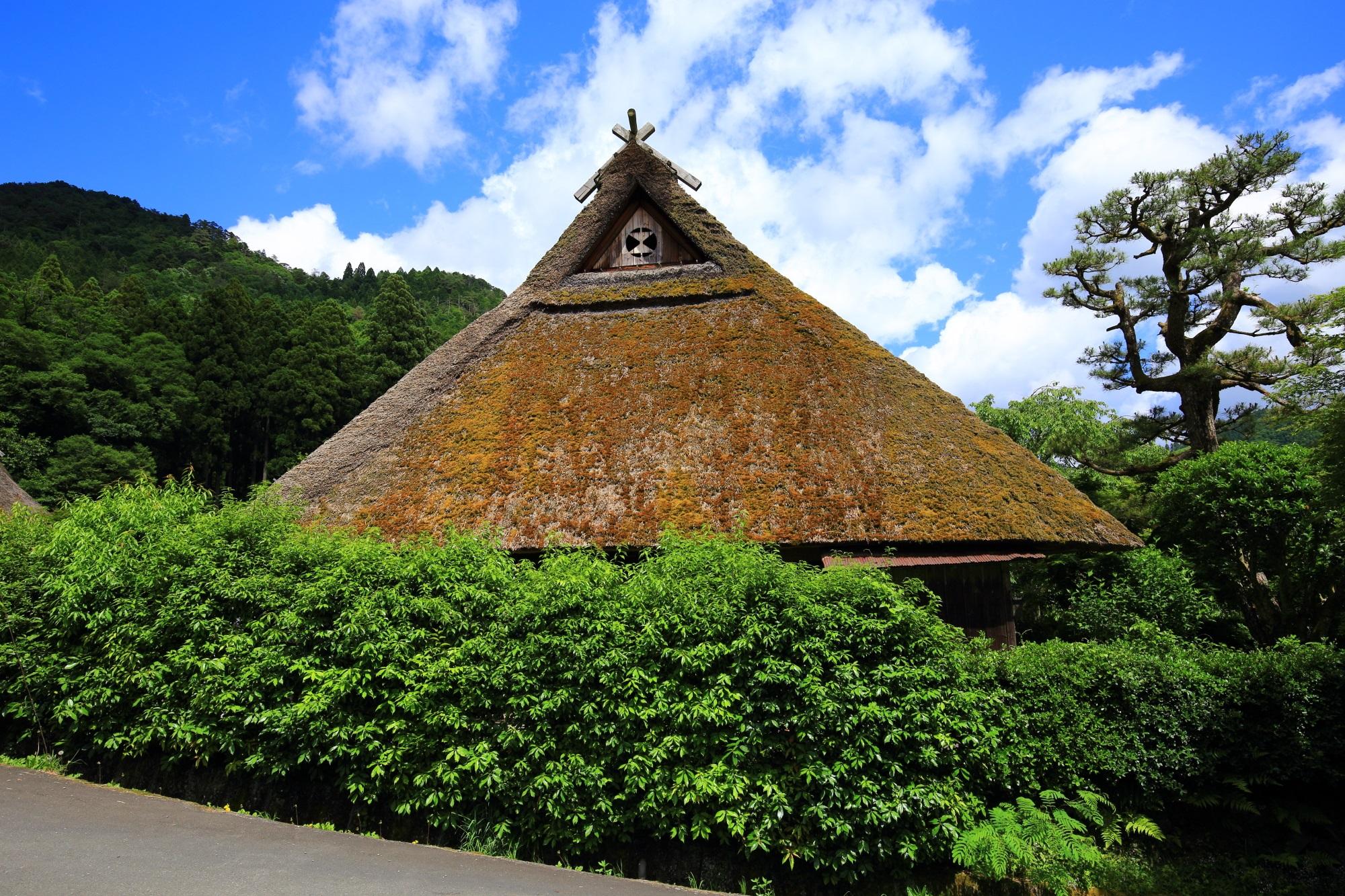 青空や緑に溶け込む趣きある茅葺屋根