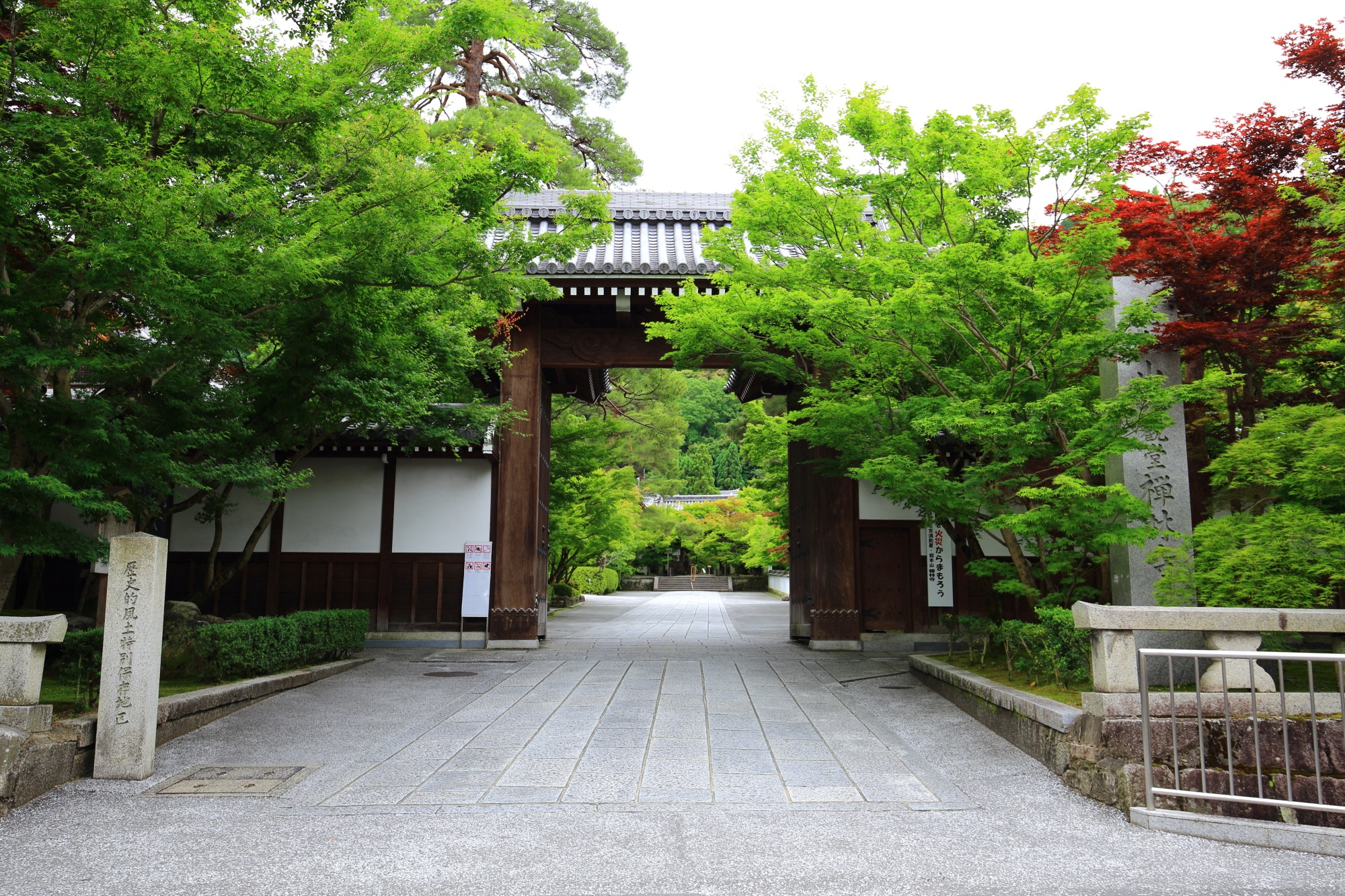 もみじの名所の永観堂の総門