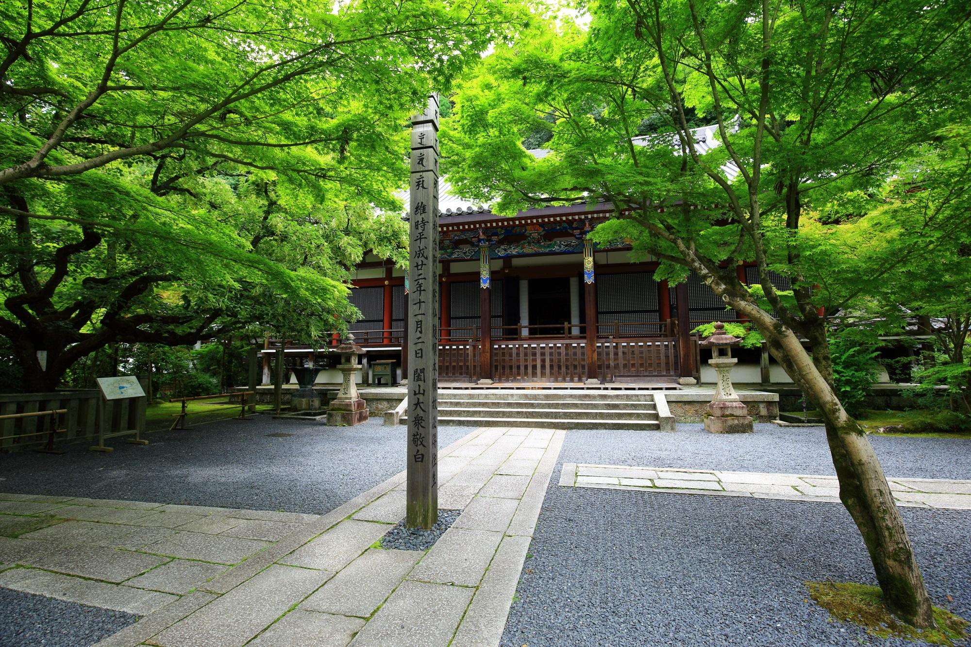 永観堂 青もみじと苔 極上の緑の世界と庭園