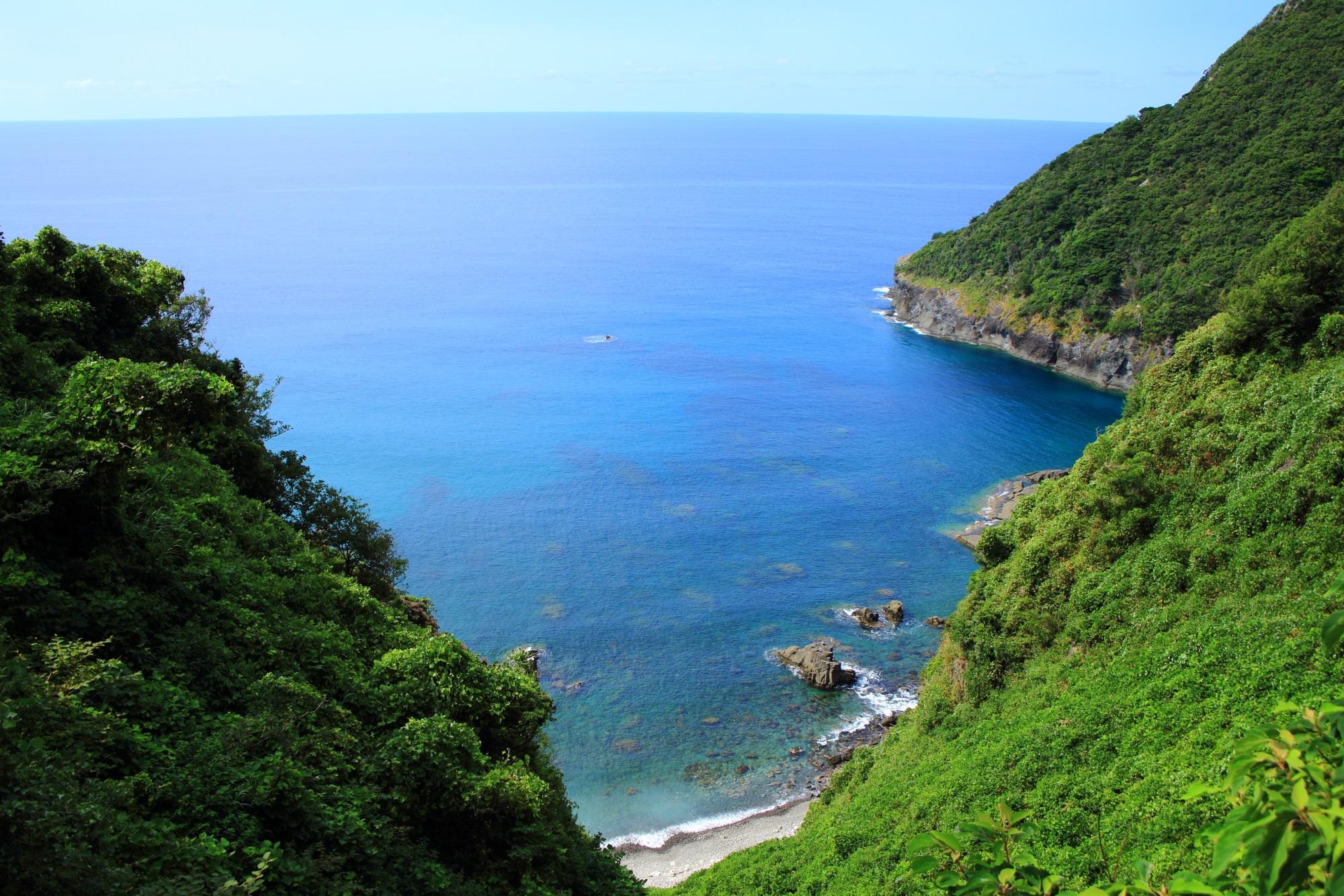 犬ヶ岬の緑豊かな海辺の隠れた絶景