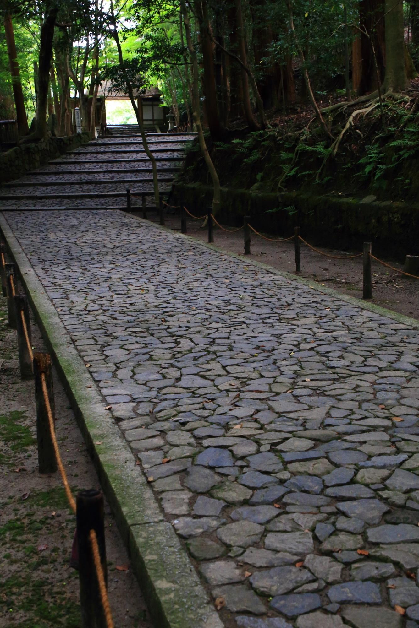 法然院の風情ある参道と山門