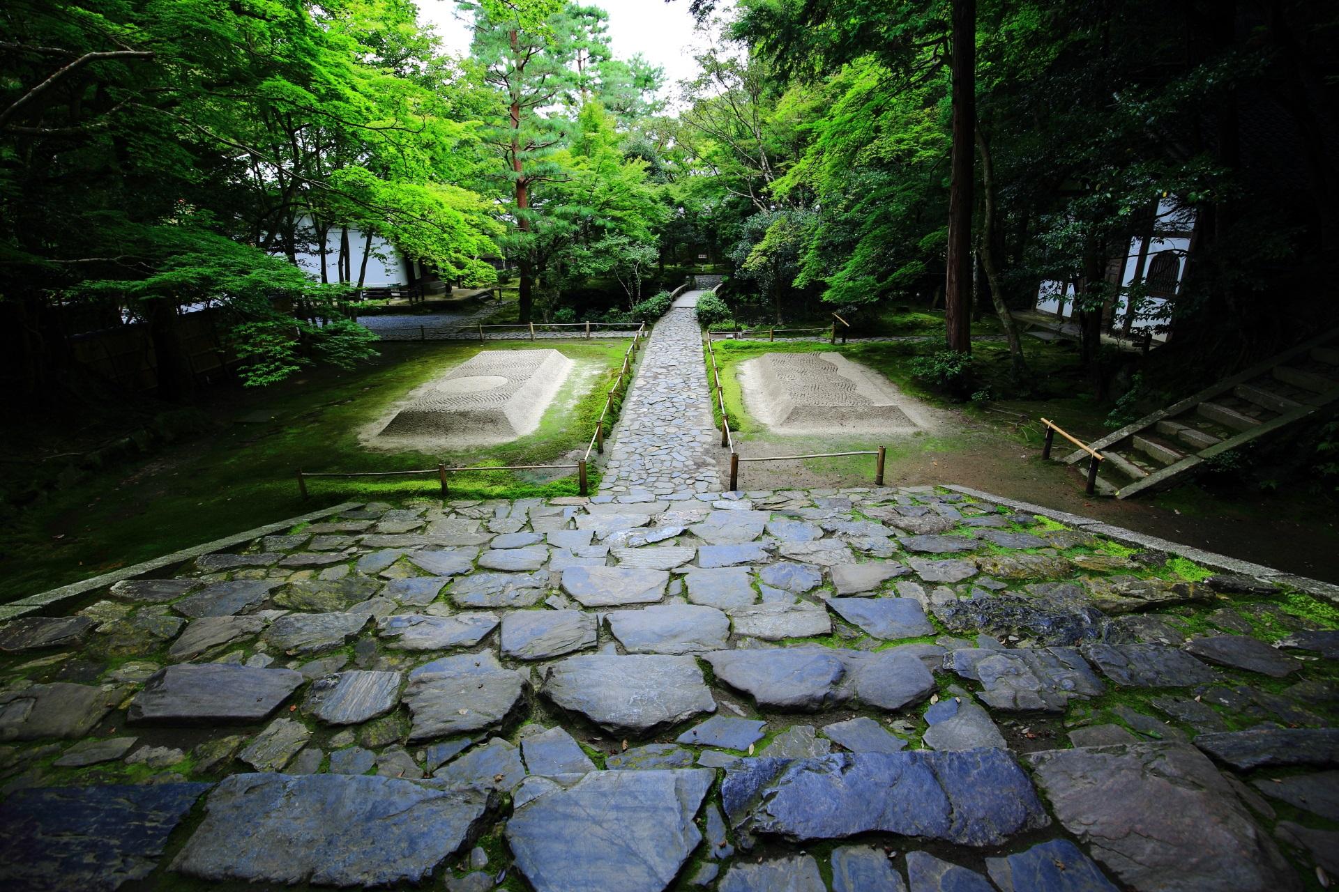 法然院 苔と青もみじ 風情ある緑と白砂壇
