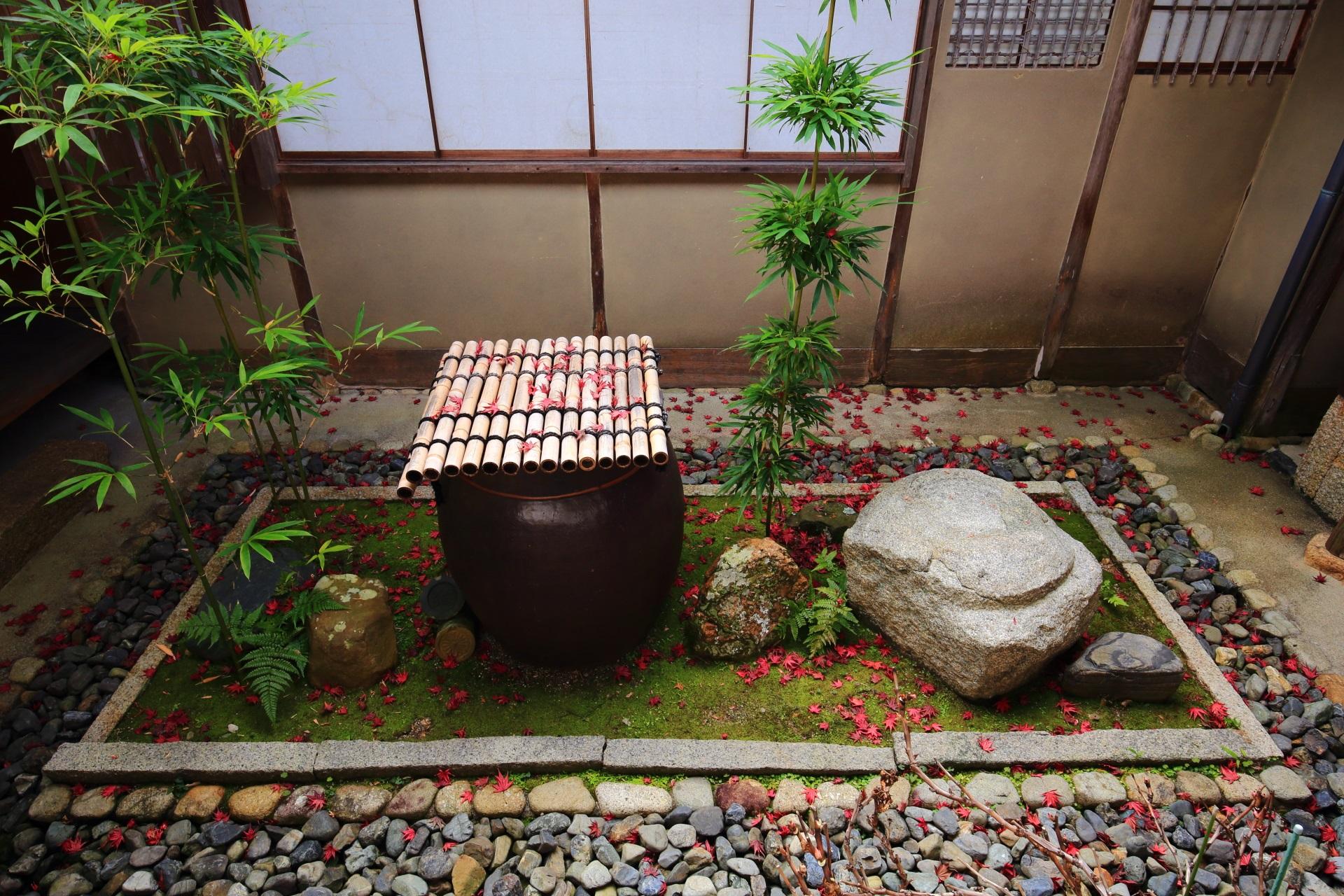 控えめな散り紅葉が華やかで上品な妙心寺大法院の風情ある秋の空間