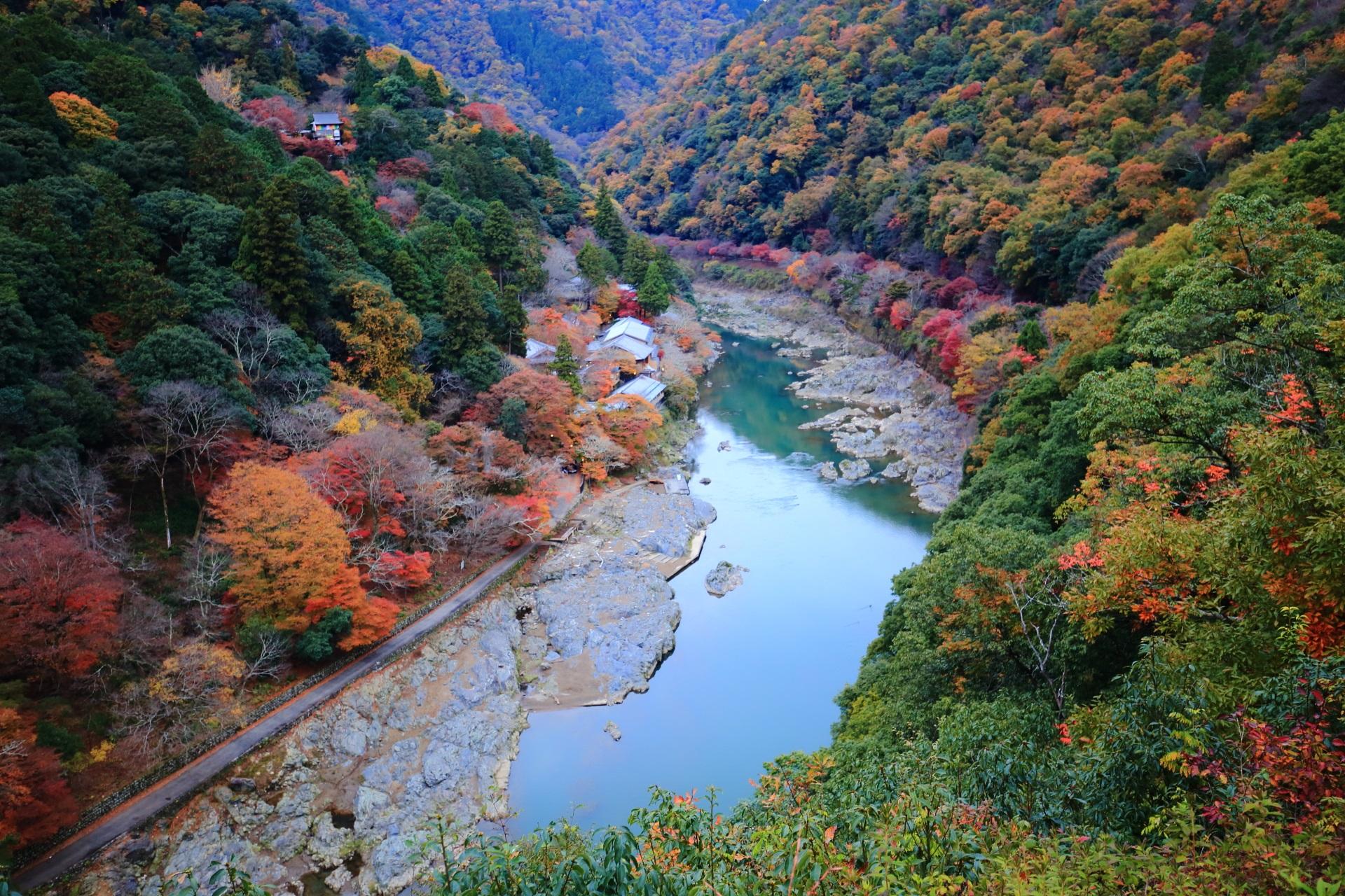 嵐山の亀山地区から眺めた深い緑に映える黄色やオレンジ色や赤色の紅葉