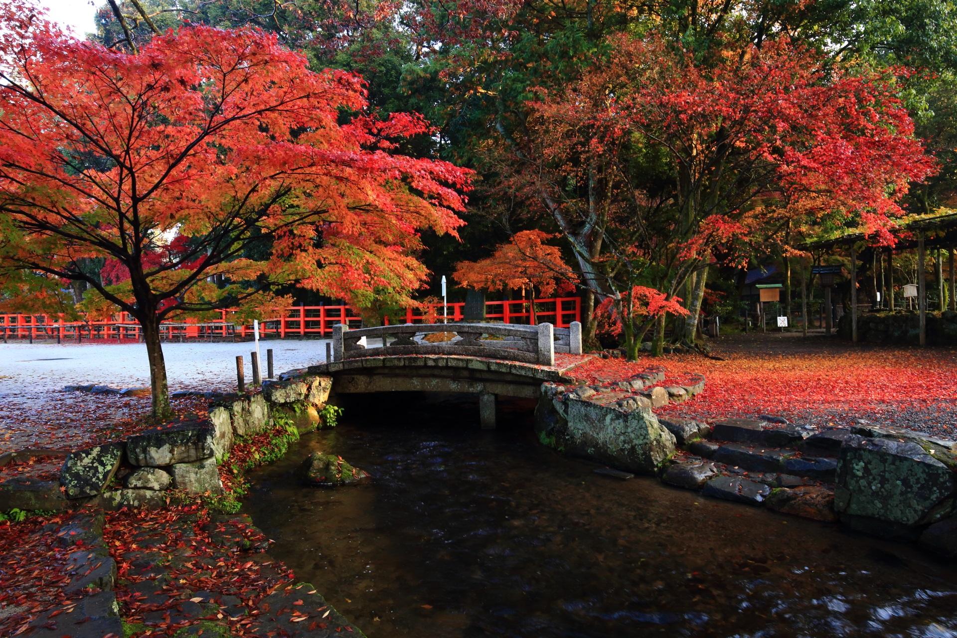 上賀茂神社の絵になる秋の光景