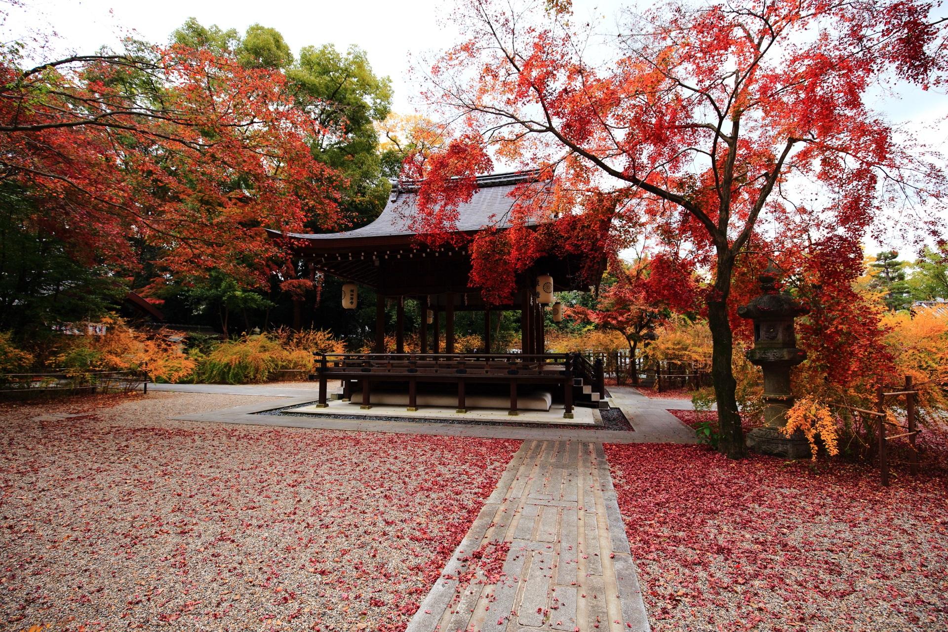 多種多様な彩りにつつまれる秋の梨木神社