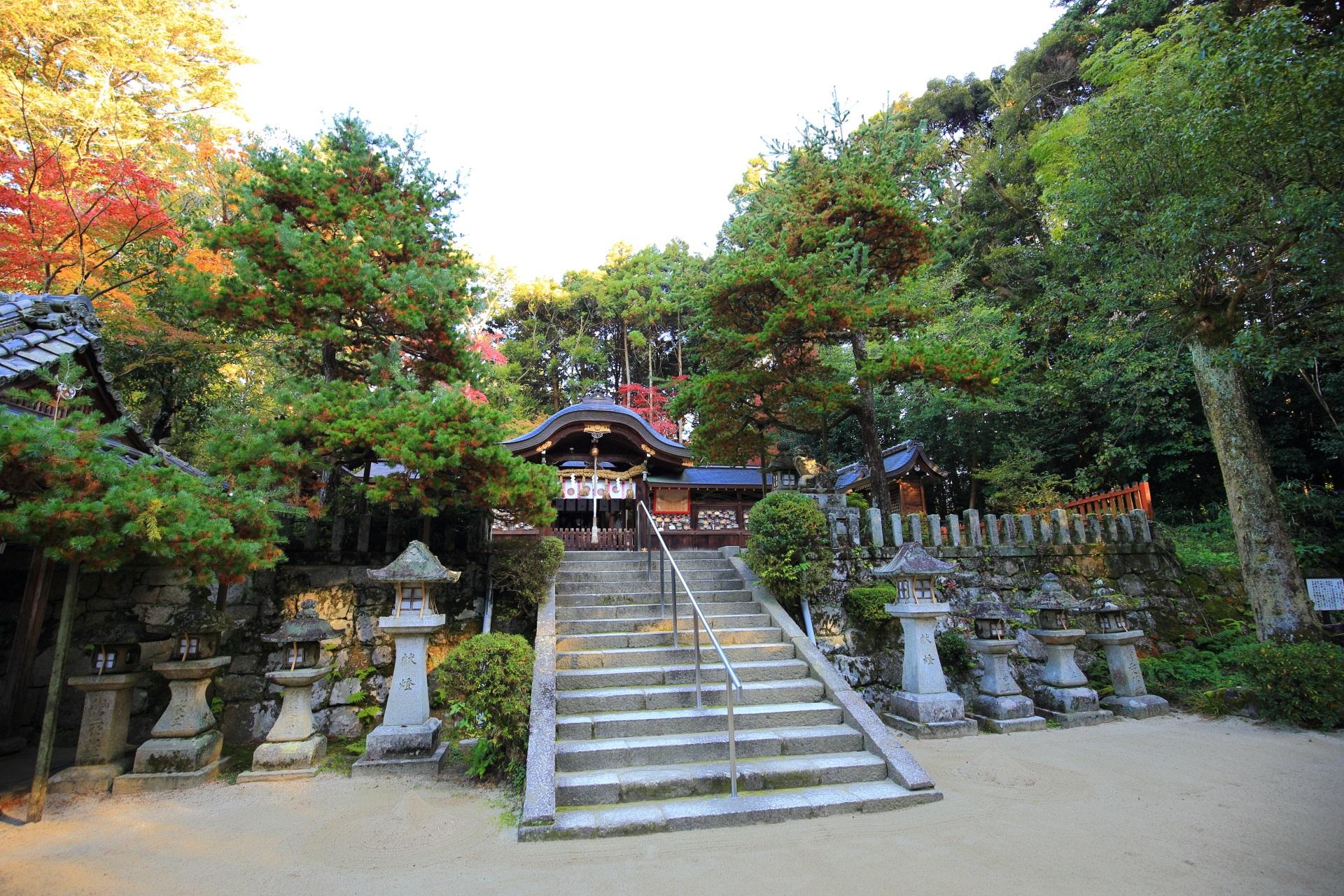 鷺森神社の少し高い位置にある本殿