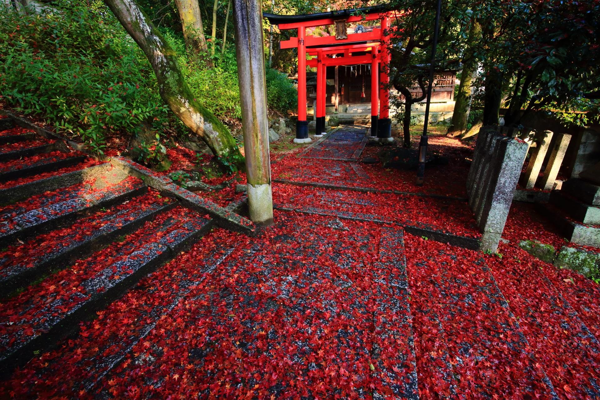 地主稲荷社と極上の散り紅葉