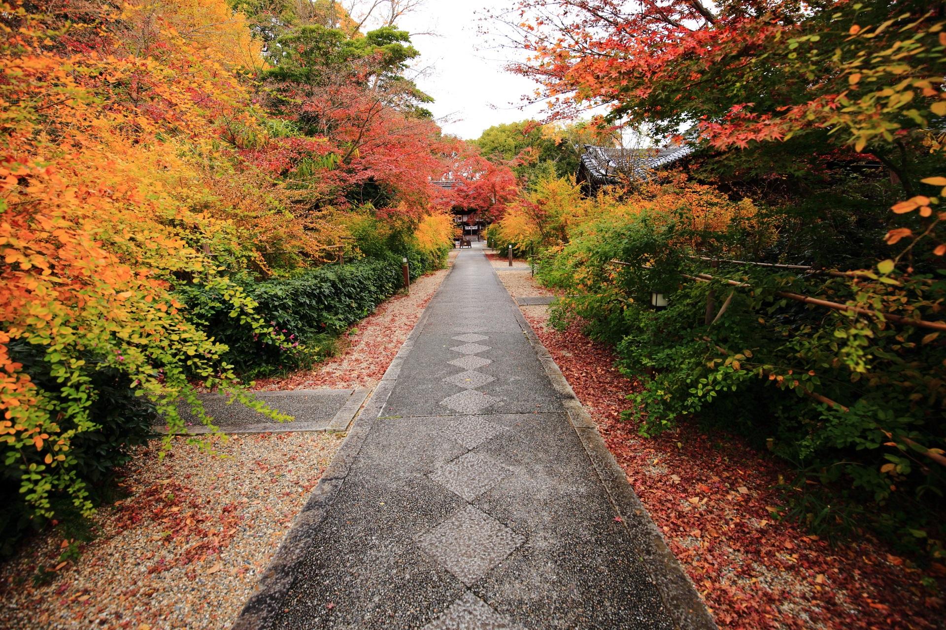 秋色に染まる梨木神社の長い参道