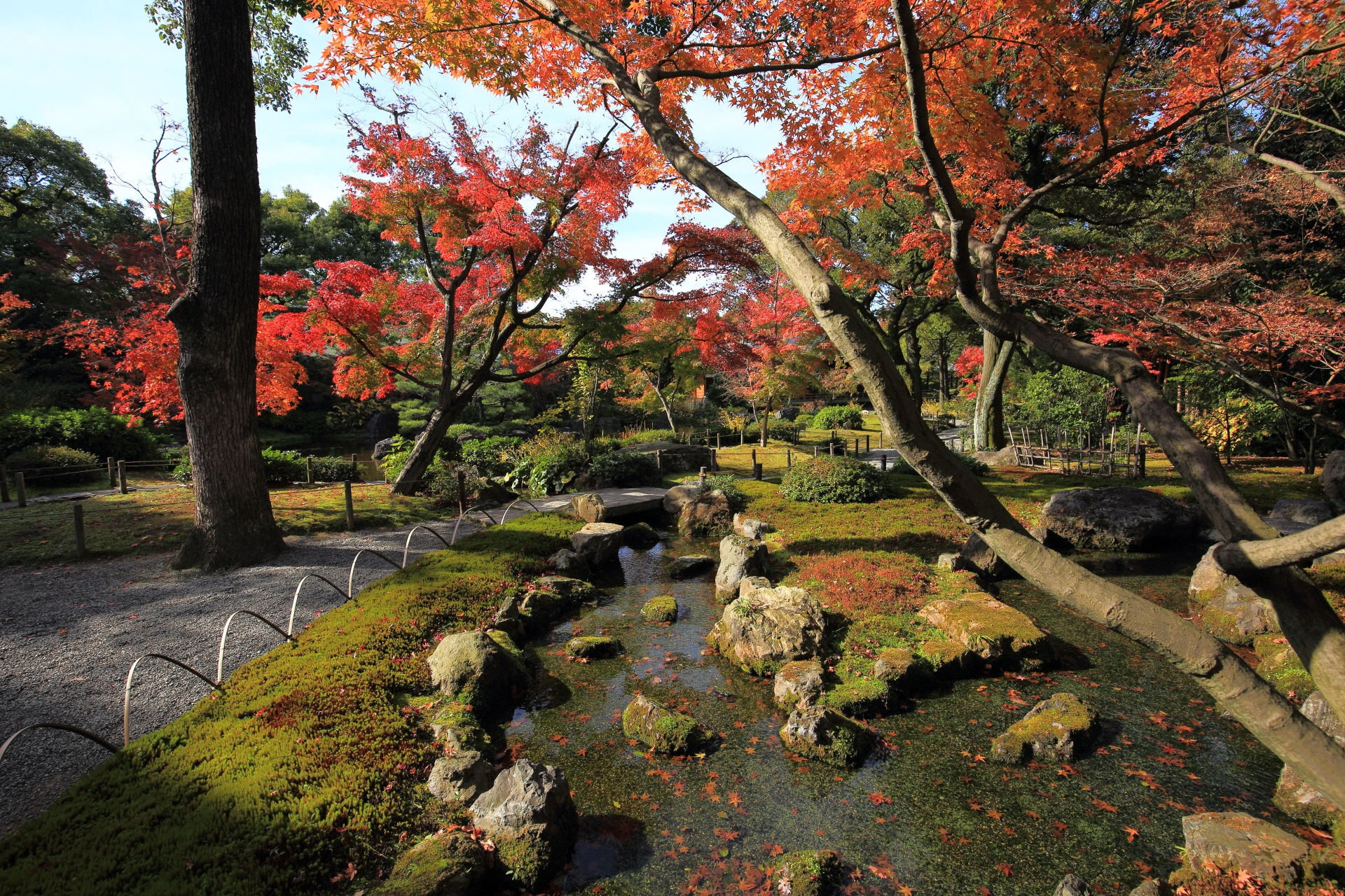 Kyoto Jyonangu-shrine colored leaves