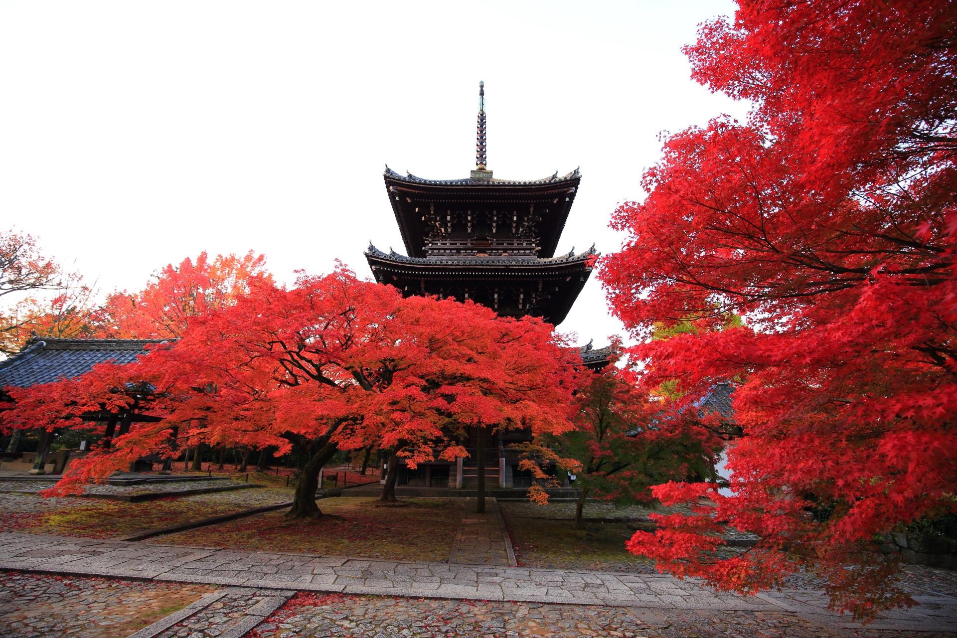 三重塔と手水舎を染める炎のような紅葉