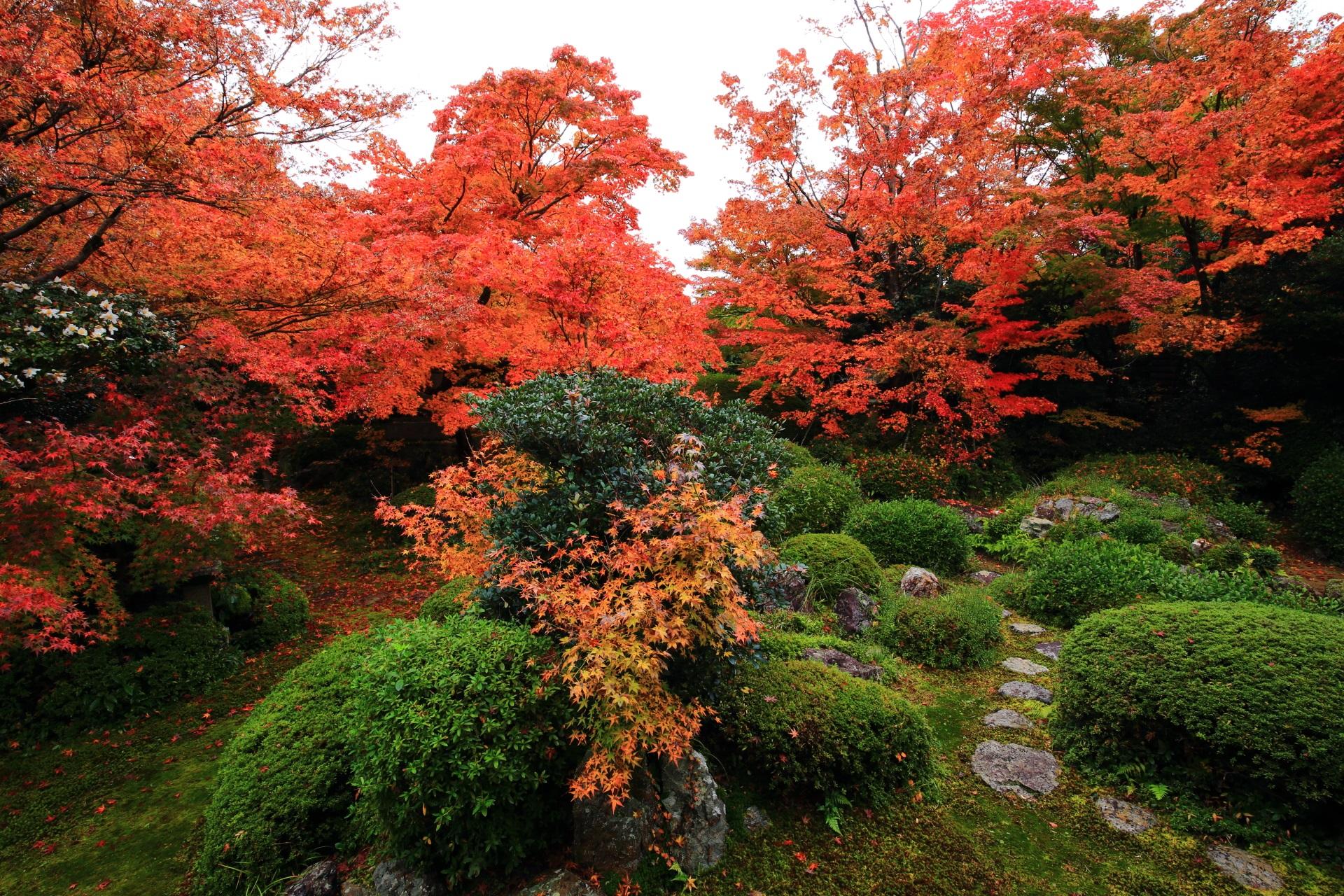 源光庵の風情たっぷりの庭園の紅葉