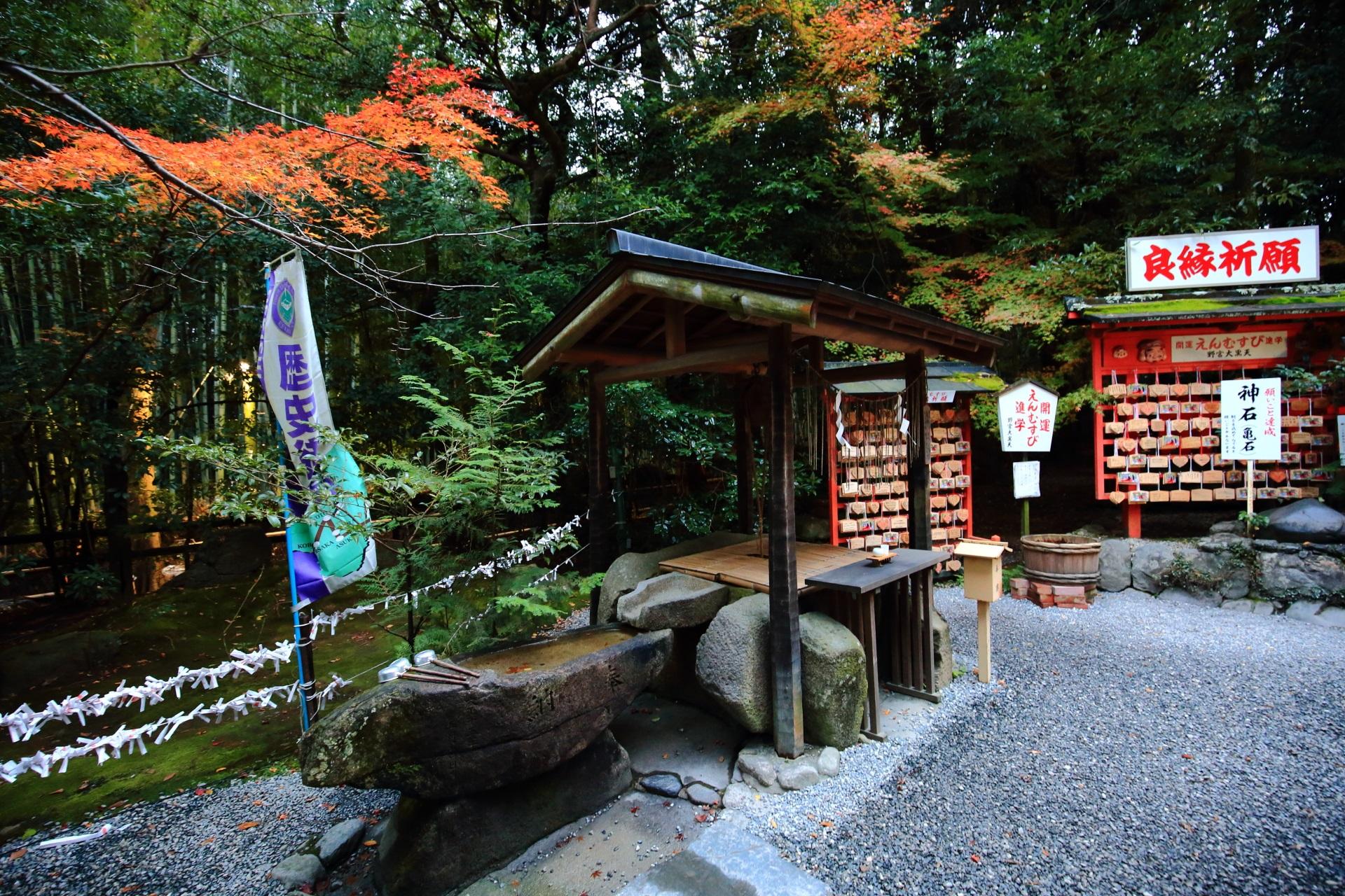 オレンジの紅葉が華やぐ野宮神社の手水舎とたくさんの絵馬