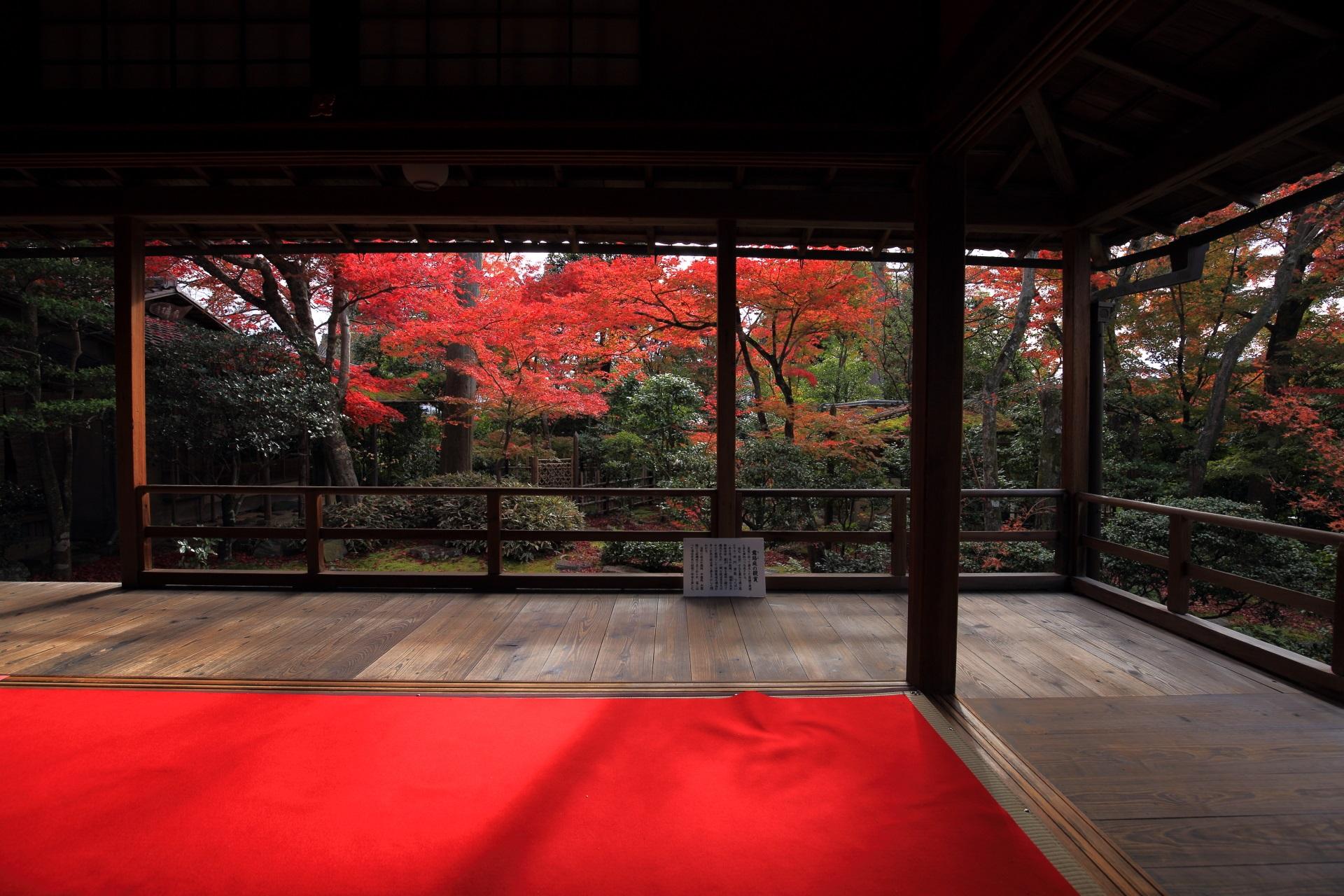 妙心寺大法院の鮮やかさと風情を兼ね備えた秋の光景