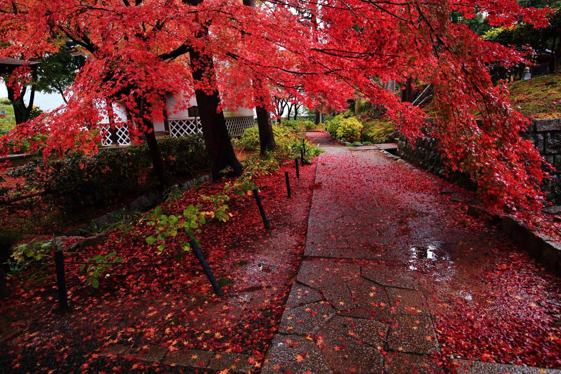 雨で潤う石畳の参道も赤く染める紅葉