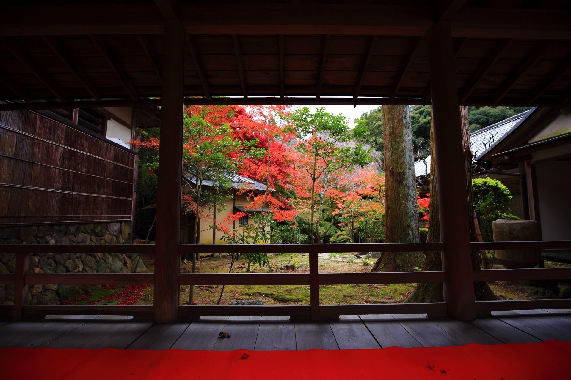 大原野神社の本殿横の回廊と紅葉の風情ある一コマ