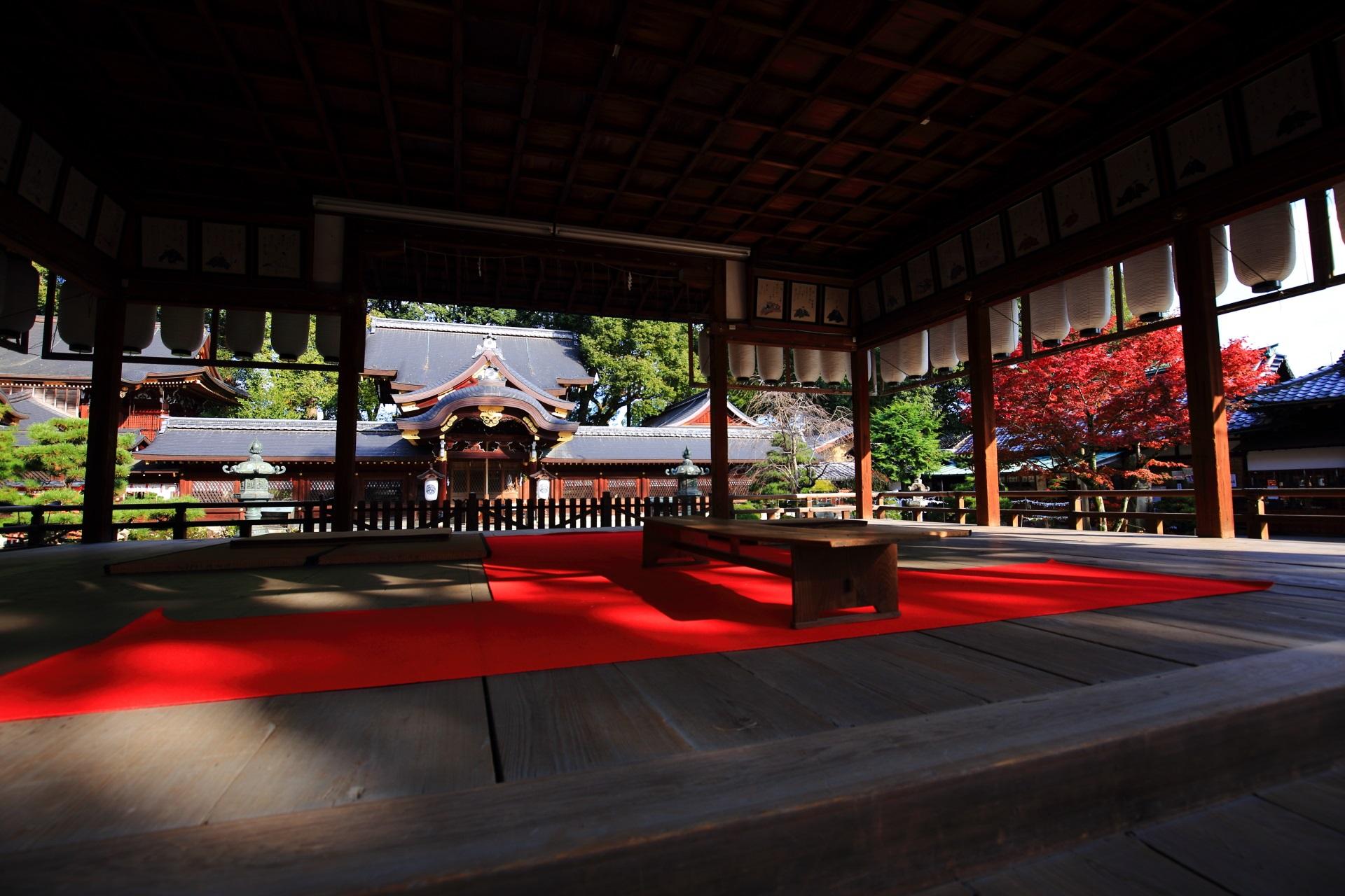 赤い絨毯が良い味を出す拝殿から眺めた本殿と紅葉
