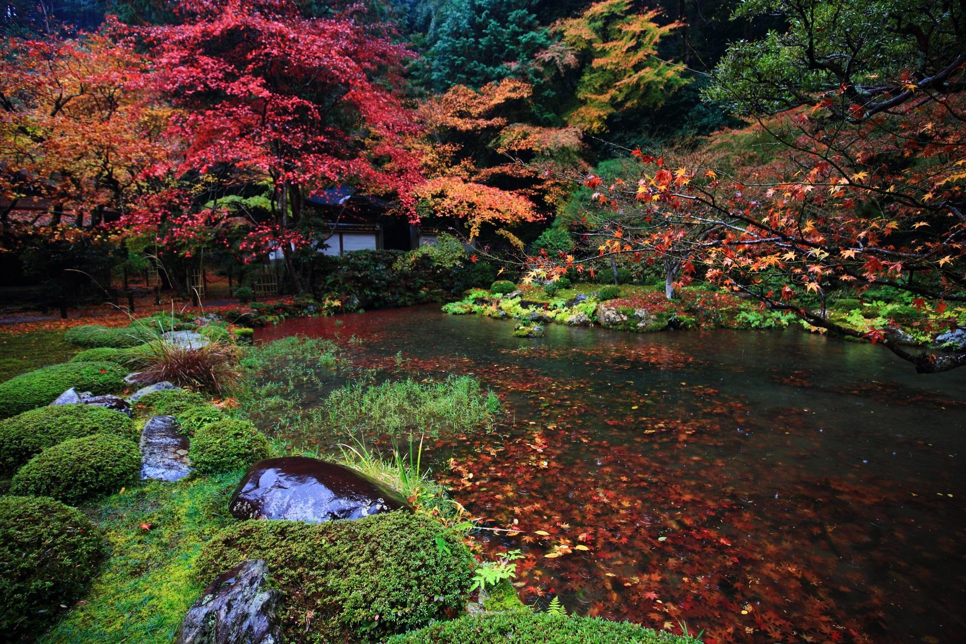 池の散り紅葉と水の中の紅葉の絨毯